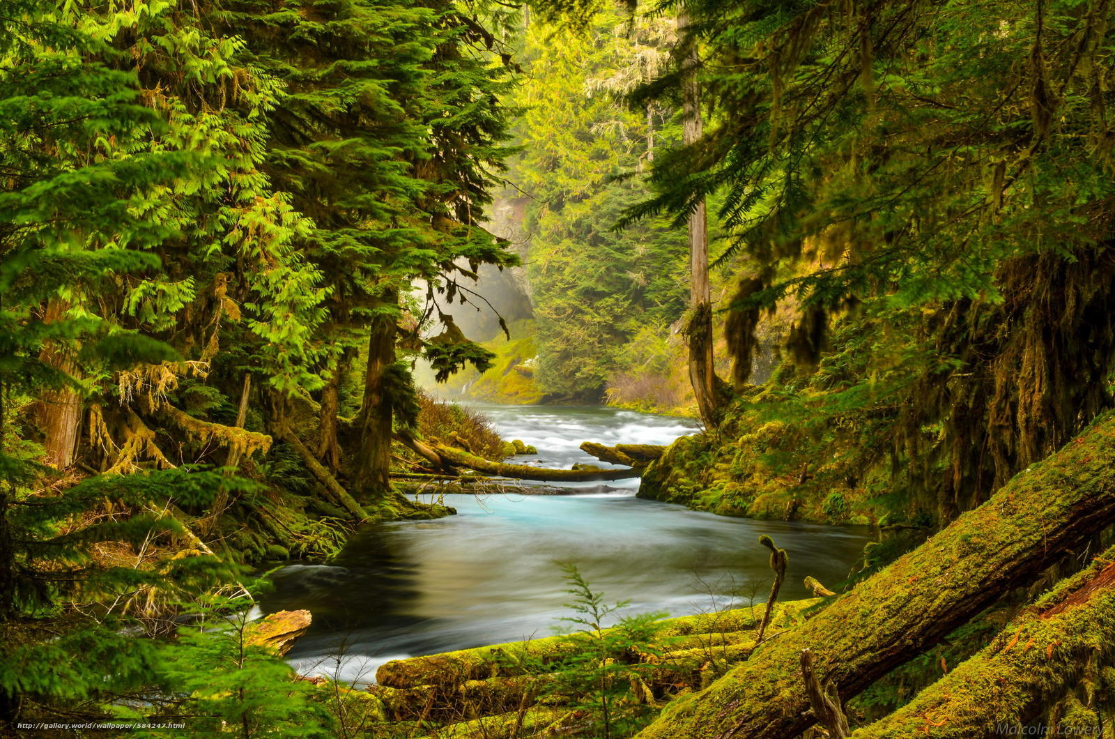 Download wallpaper nature,  river,  stones,  moss free desktop wallpaper in the resolution 2048x1357 — picture №584247