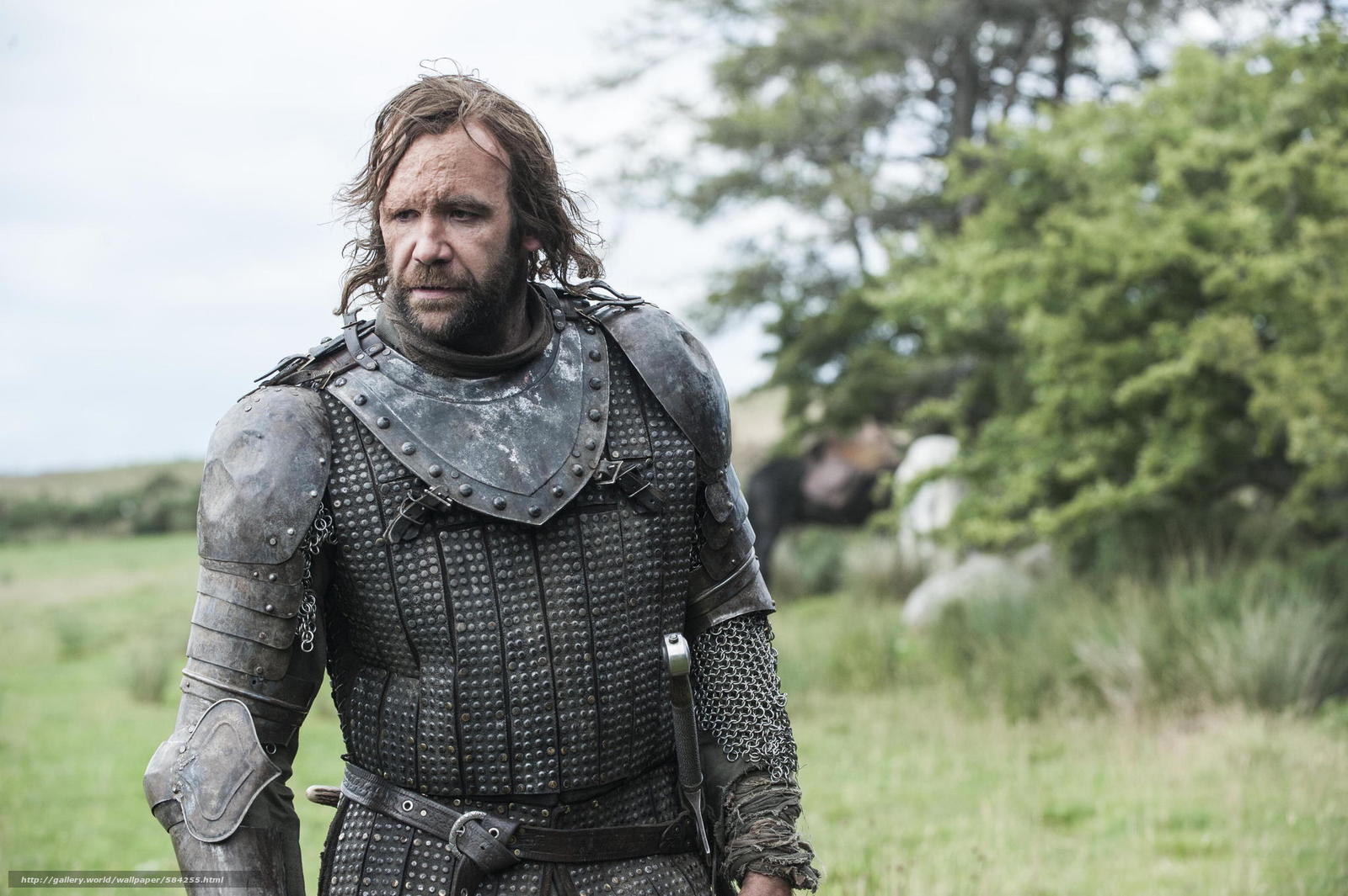 Download wallpaper Sandor Clegane,  nature,  warrior,  dog free desktop wallpaper in the resolution 2048x1363 — picture №584255
