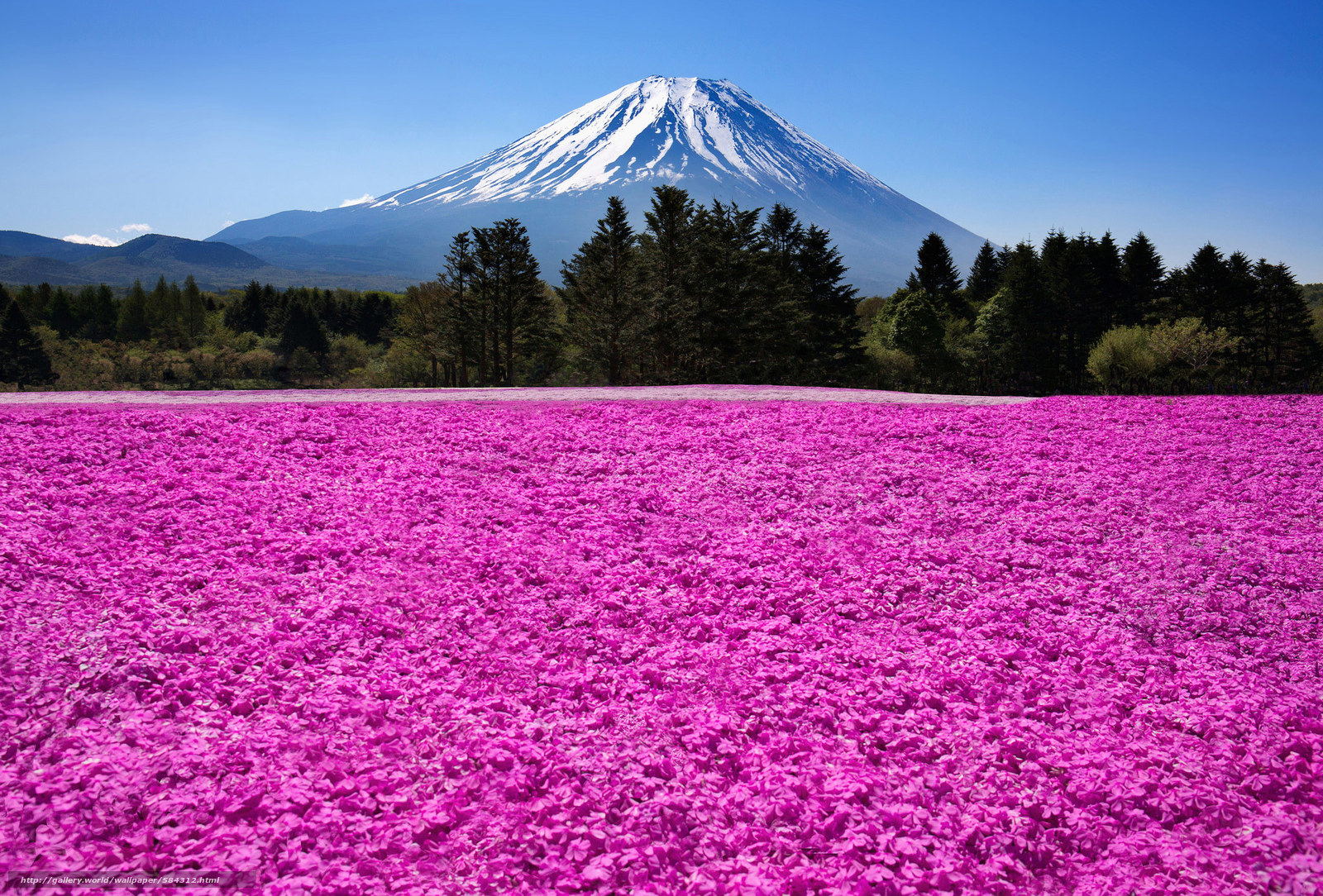 Download wallpaper nature,  Fuji,  Japan,  mountain free desktop wallpaper in the resolution 2048x1387 — picture №584312
