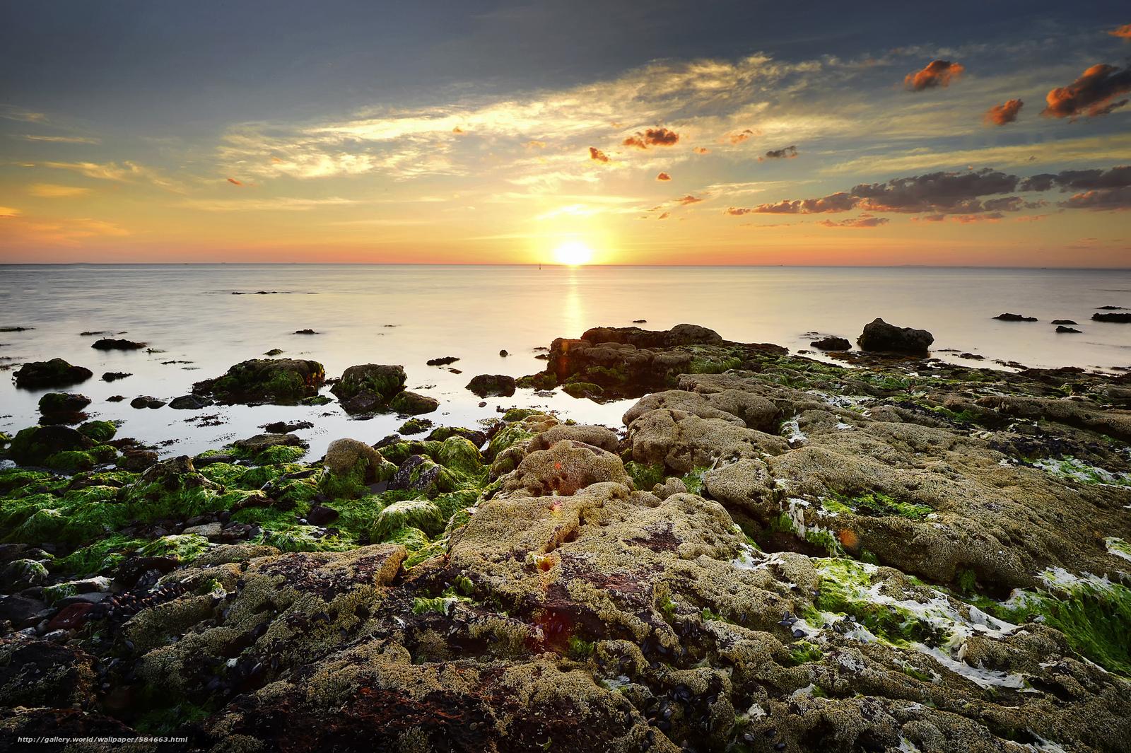 scaricare gli sfondi DAWN,  mare,  ALGHE,  pietre Sfondi gratis per la risoluzione del desktop 2048x1363 — immagine №584663