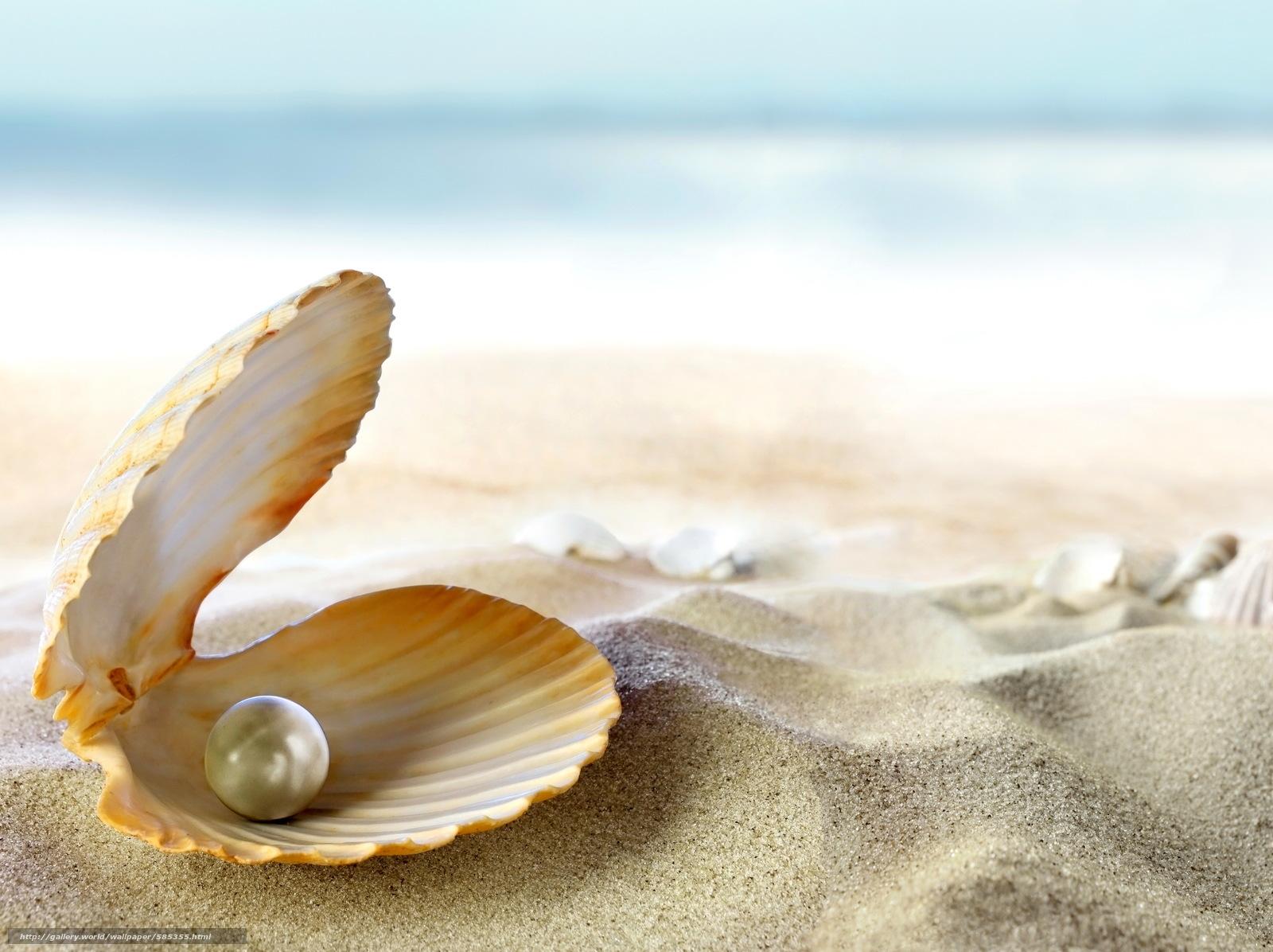 Download wallpaper sea,  beach,  tropics,  ocean free desktop wallpaper in the resolution 4850x3625 — picture №585355