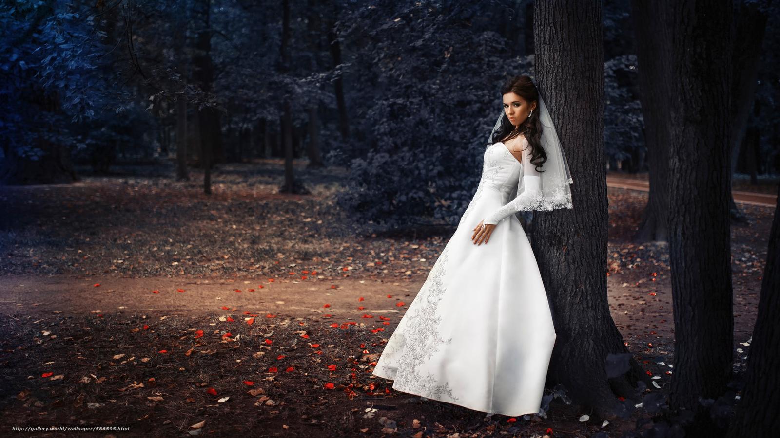 scaricare gli sfondi sposa,  parco,  matrimonio,  vestire Sfondi gratis per la risoluzione del desktop 2000x1125 — immagine №586595