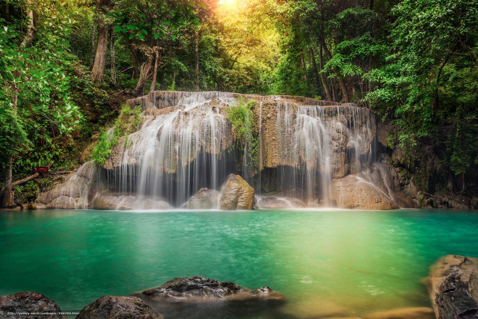 Descargar gratis árboles,  tratamiento,  Tailandia,  FLUJO Fondos de escritorio en la resolucin 2880x1920 — imagen №586785