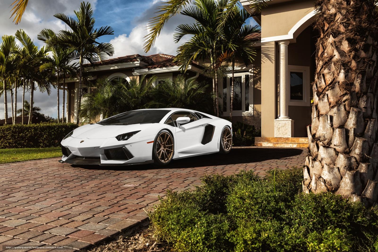 Скачать обои авентадор,  белый,  особняк,  Lamborghini бесплатно для рабочего стола в разрешении 6016x4016 — картинка №586803