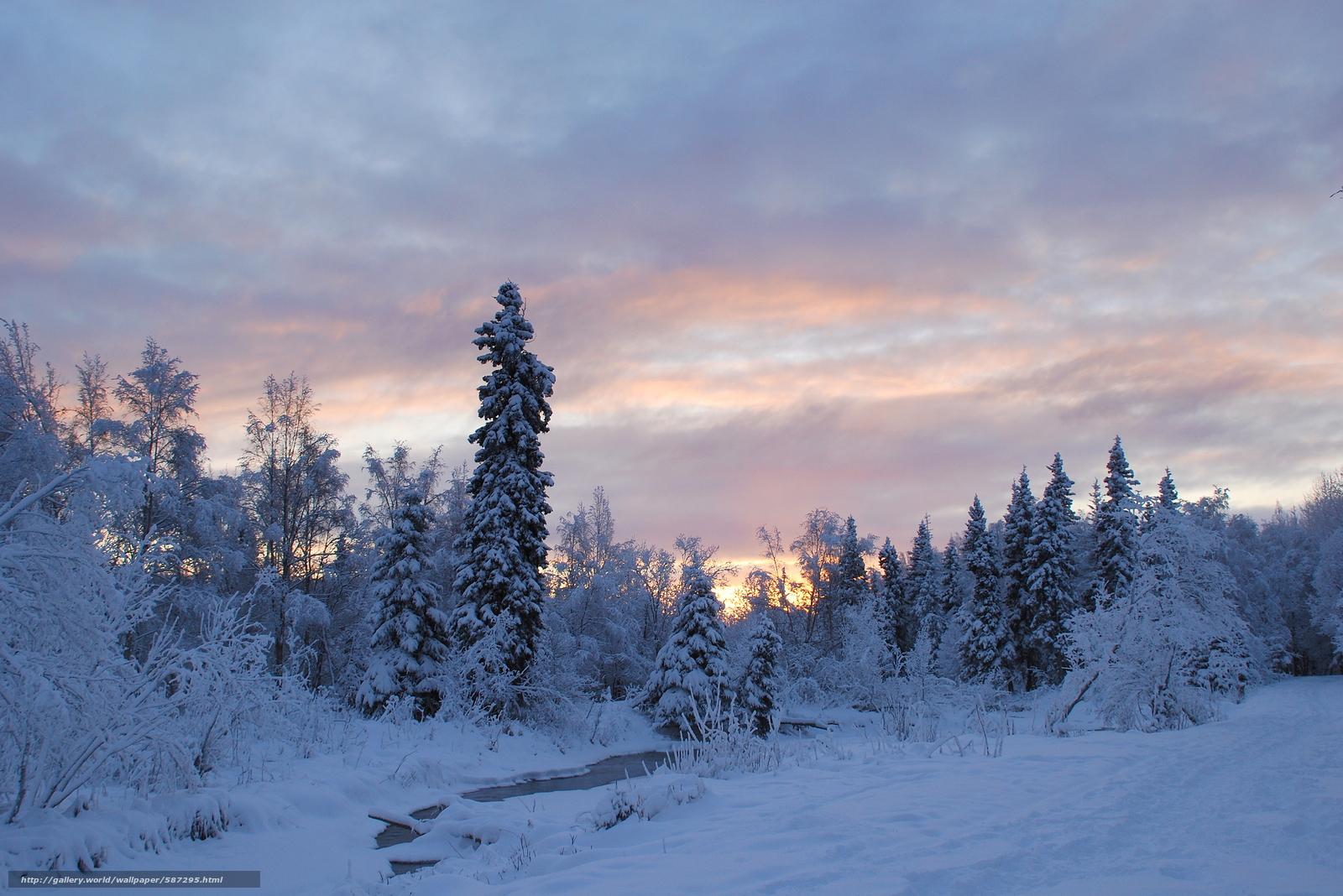 pobra tapety zima,  rzeka,  las,  drzew Darmowe tapety na pulpit rozdzielczoci 3776x2520 — zdjcie №587295