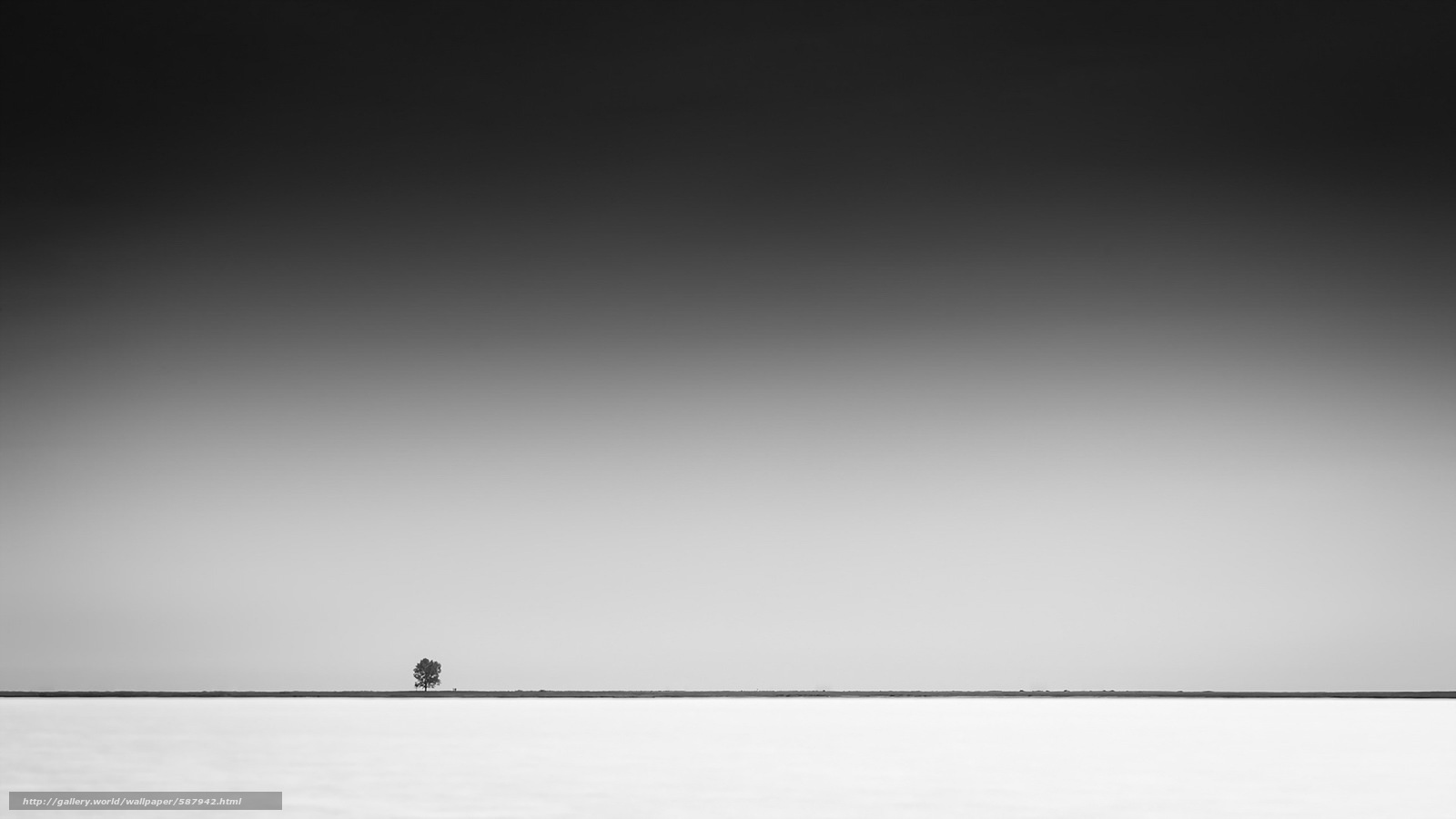 Download wallpaper minimalism,  sky,  tree free desktop wallpaper in the resolution 1920x1080 — picture №587942