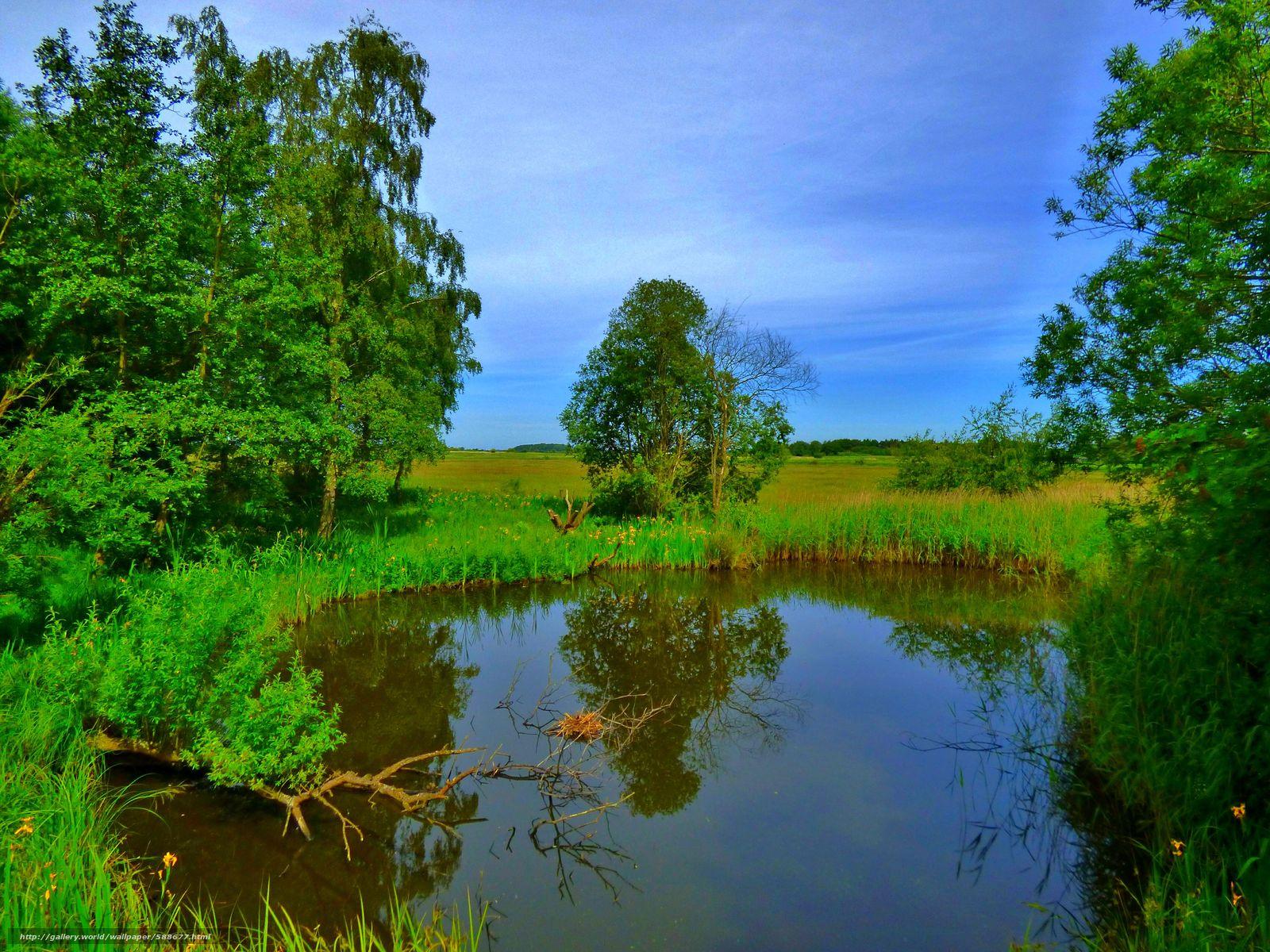 Tlcharger Fond d'ecran étang,  arbres,  ciel,  domaine Fonds d'ecran gratuits pour votre rsolution du bureau 4608x3456 — image №588677