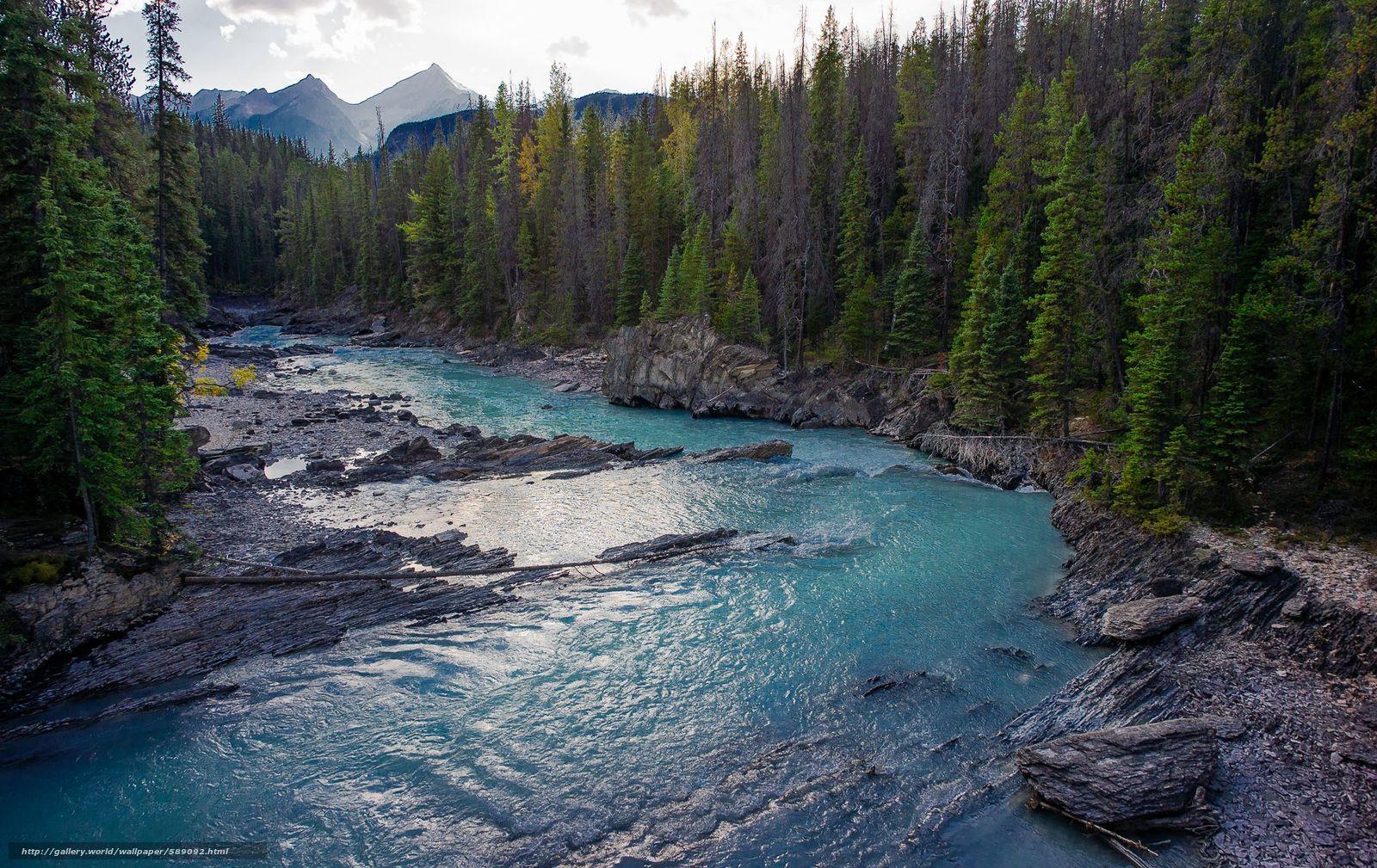 Скачать обои Banff National Forest,  Alberta,  Canada бесплатно для рабочего стола в разрешении 2000x1261 — картинка №589092