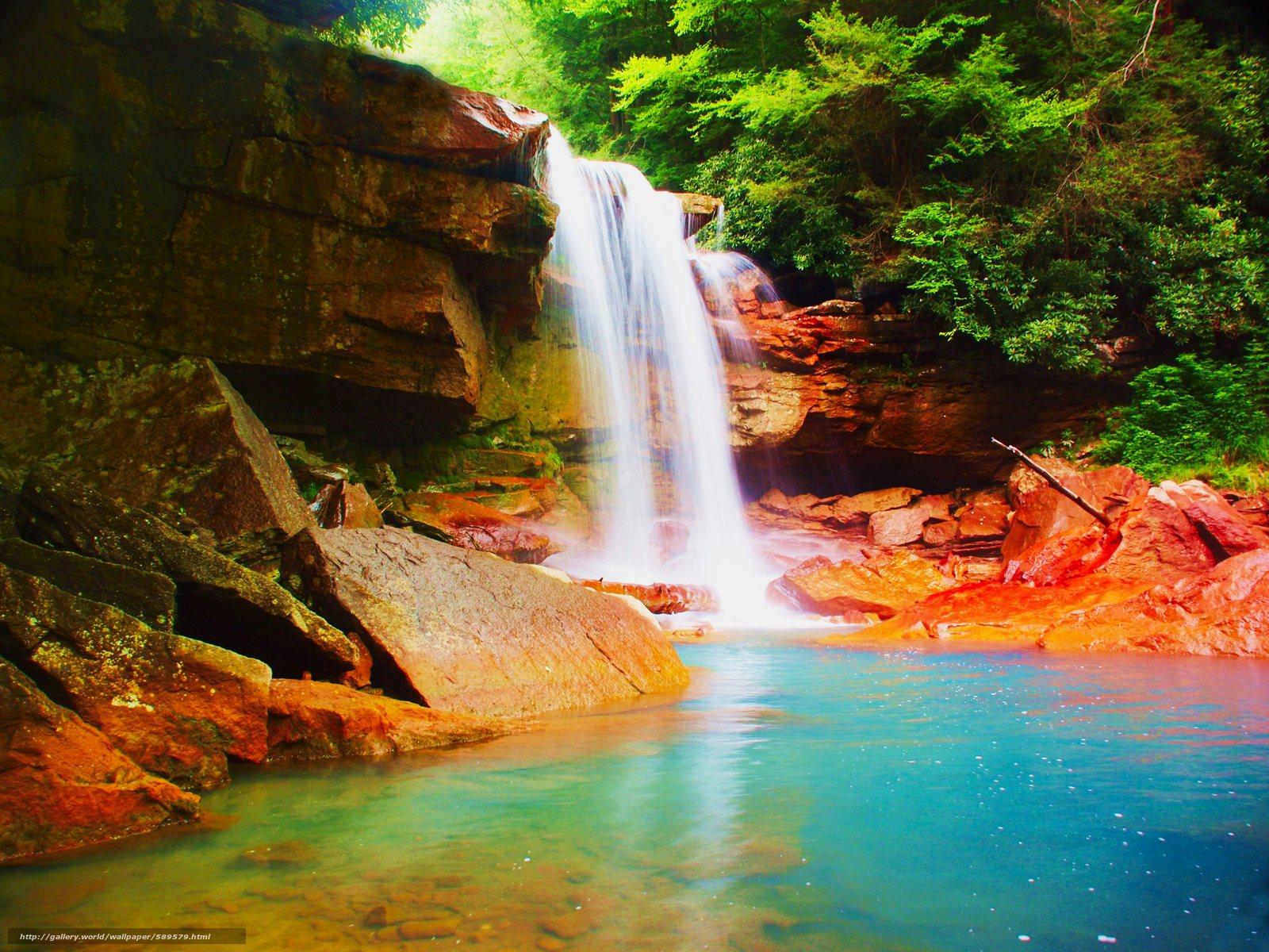 Tlcharger Fond d'ecran cascade,  Rocks,  forêt,  arbres Fonds d'ecran gratuits pour votre rsolution du bureau 4032x3024 — image №589579