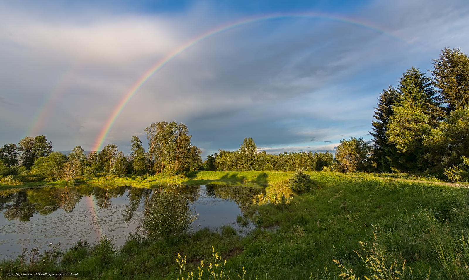 Скачать обои озеро,  деревья,  поле,  радуга бесплатно для рабочего стола в разрешении 5656x3380 — картинка №590375