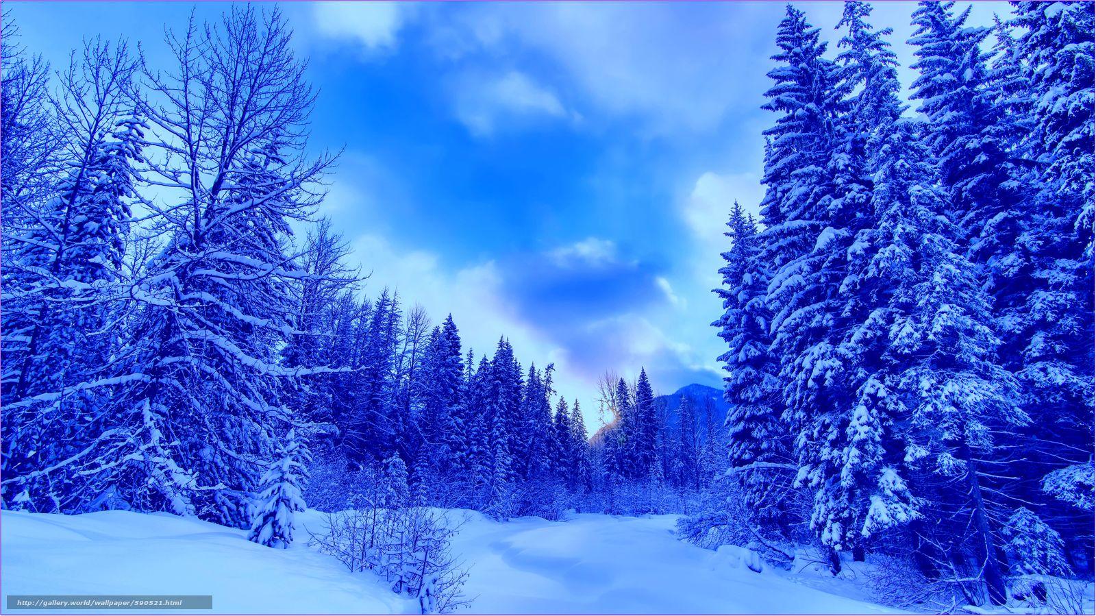 Scaricare gli sfondi inverno montagne alberi paesaggio for Desktop gratis inverno