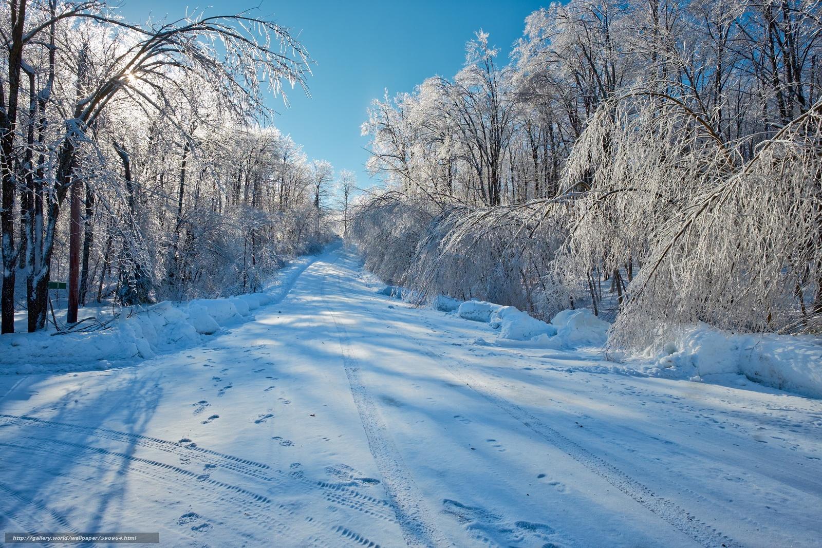 Download wallpaper winter,  road,  trees,  landscape free desktop wallpaper in the resolution 2448x1632 — picture №590964