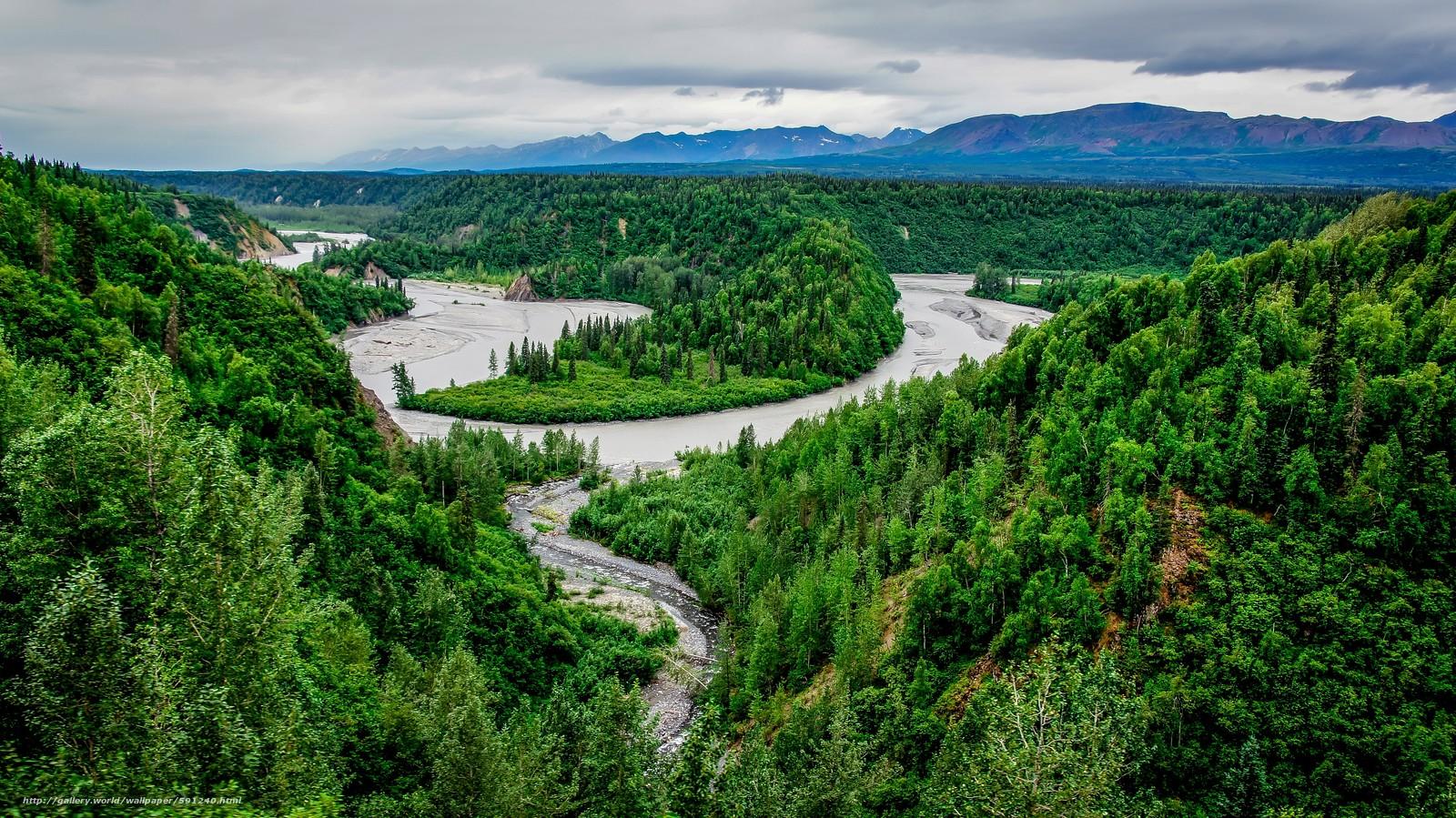pobra tapety Denali National Park,  Alaska,  rzeka,  las Darmowe tapety na pulpit rozdzielczoci 4912x2760 — zdjcie №591240