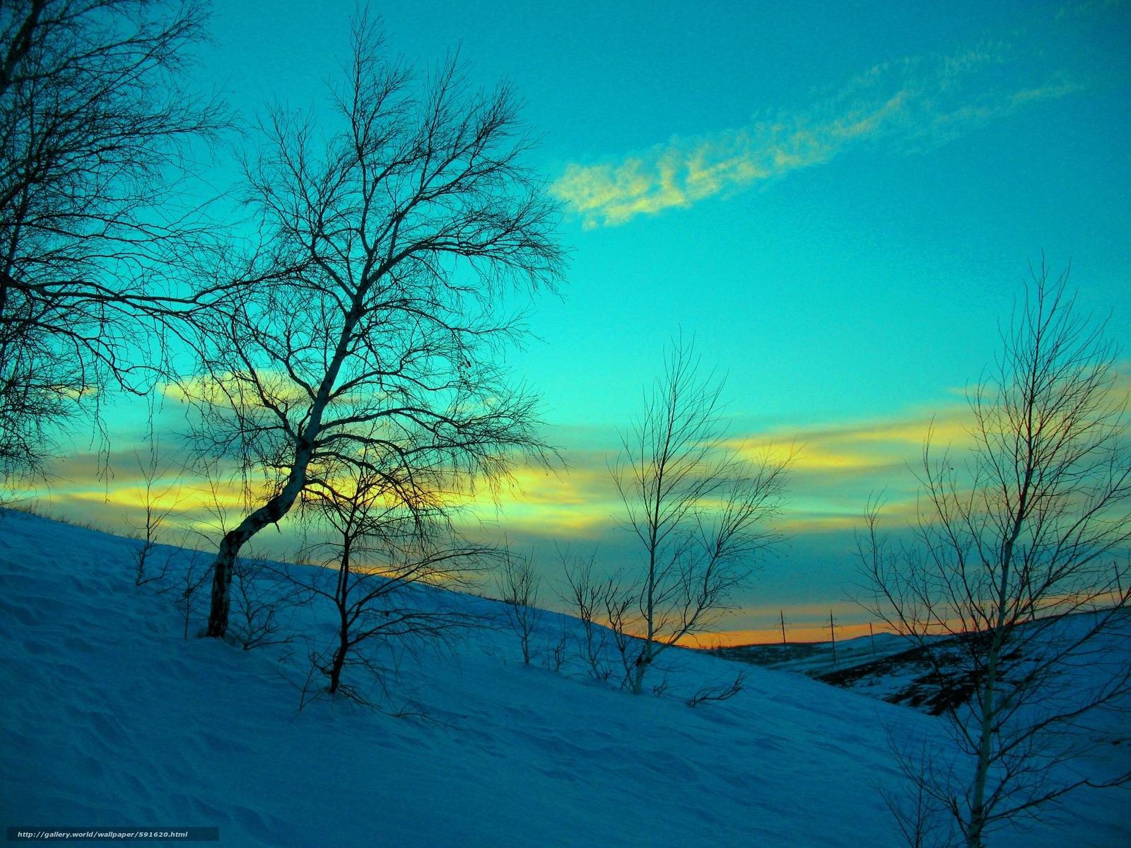 Скачать обои холод,  ностальгия,  вечер,  снег бесплатно для рабочего стола в разрешении 3264x2448 — картинка №591620