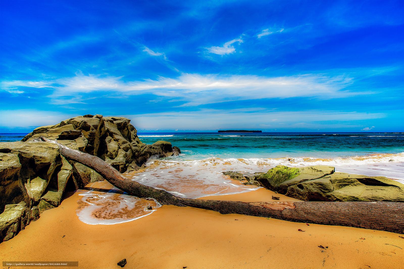 scaricare gli sfondi mare,  puntellare,  Rocce,  albero caduto Sfondi gratis per la risoluzione del desktop 2000x1331 — immagine №591680