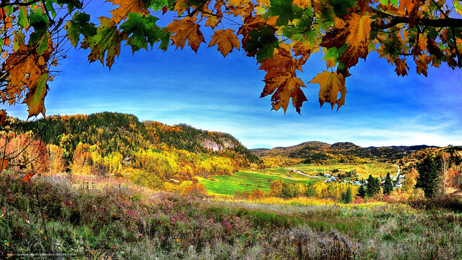 Tlcharger fond d 39 ecran automne montagnes hills arbres for Sfondi autunno hd