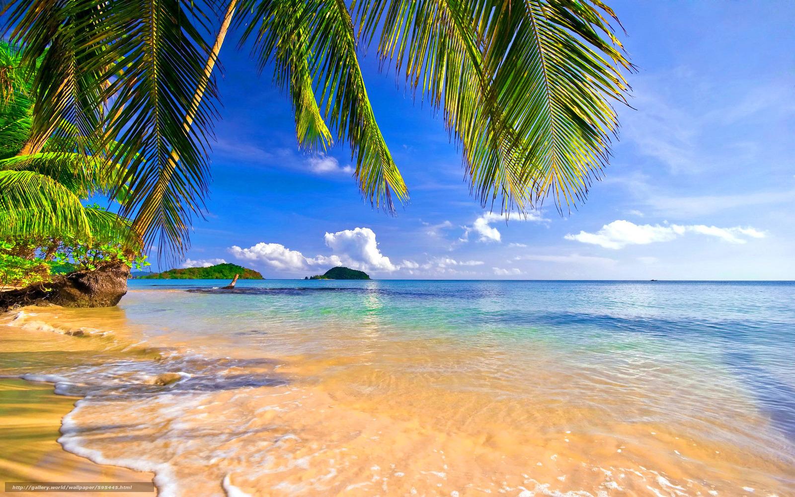 Scaricare gli sfondi mare puntellare palme paesaggio for Foto per desktop mare