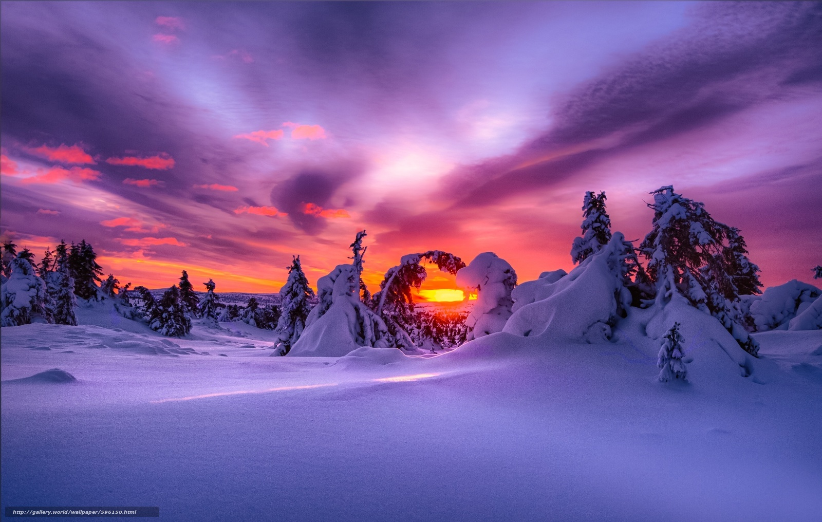 scaricare gli sfondi paesaggio,  natura,  inverno,  nevicata Sfondi gratis per la risoluzione del desktop 2048x1300 — immagine №596150