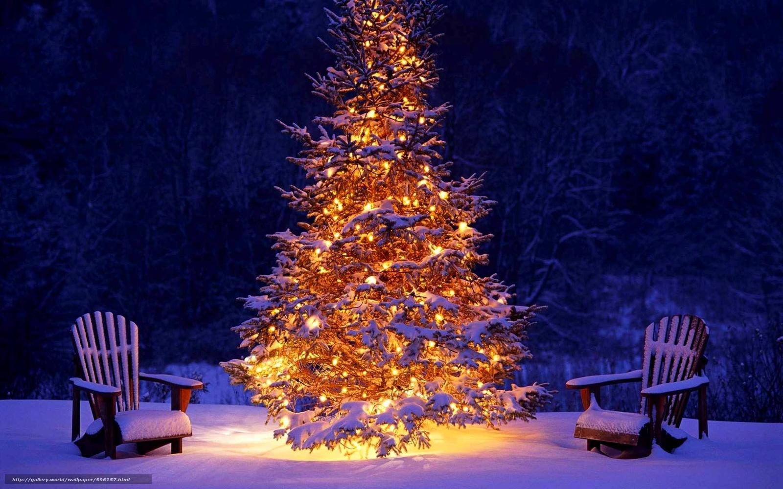 Download Hintergrund Weihnachten, Tannenbaum, Landschaft Freie ...