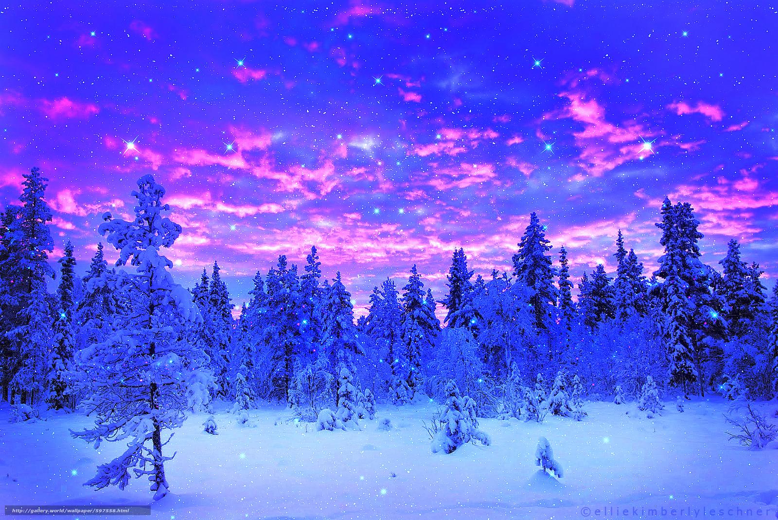 Descargar gratis invierno,  árboles,  nieve Fondos de escritorio en la resolucin 2048x1371 — imagen №597558