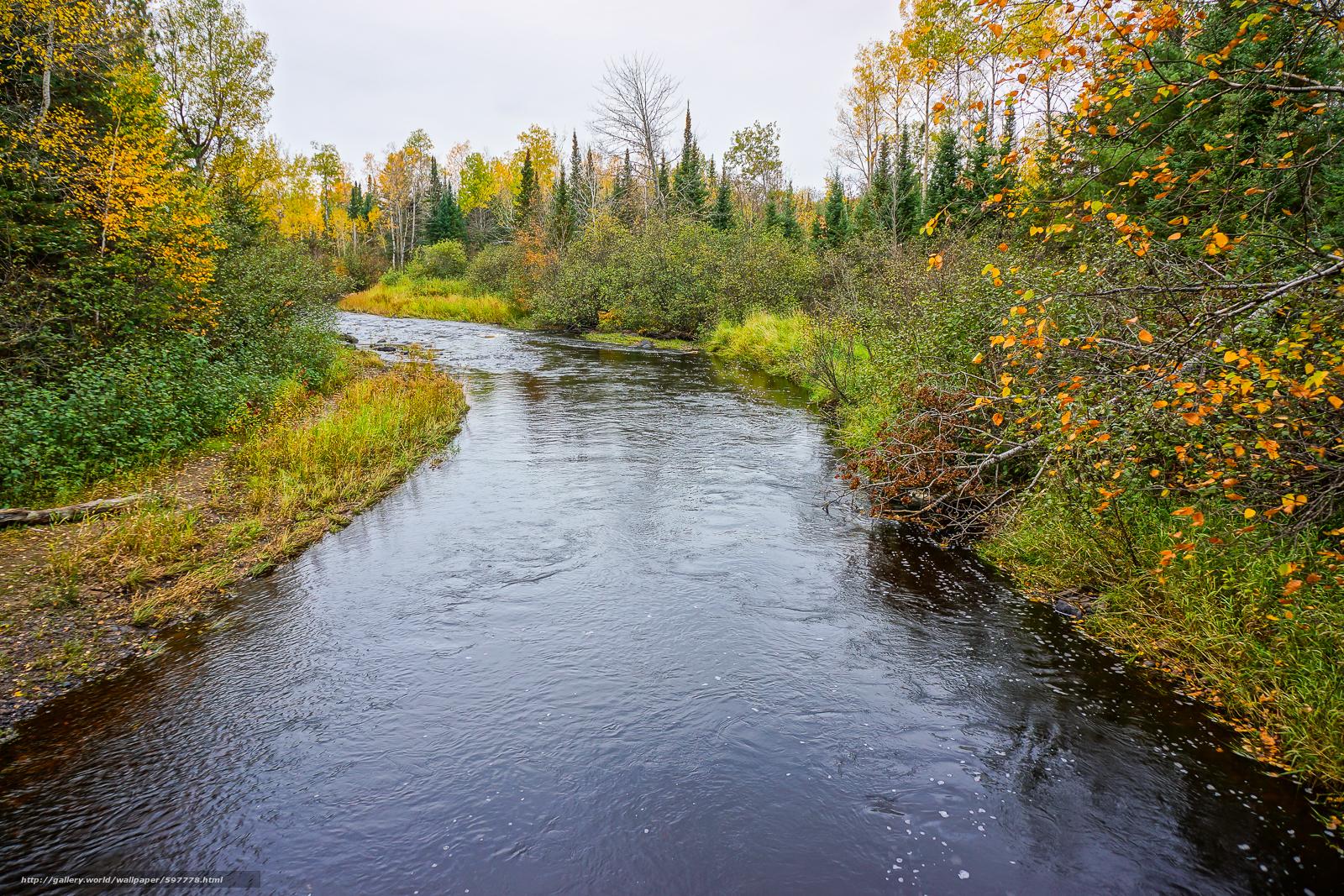 Скачать обои река,  осень,  деревья,  природа бесплатно для рабочего стола в разрешении 1600x1067 — картинка №597778