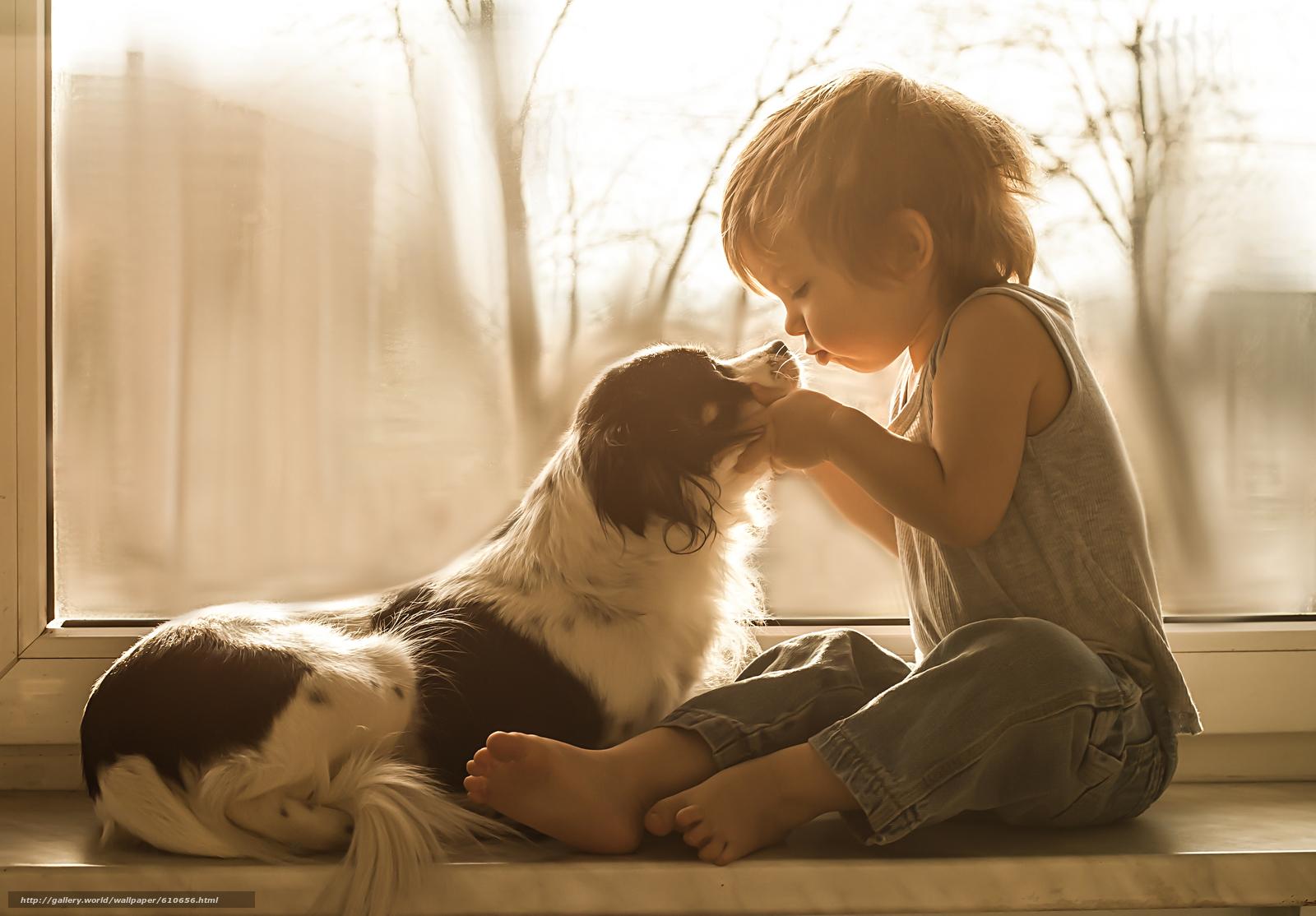 Скачать обои мальчик,  собака,  друзья,  окно бесплатно для рабочего стола в разрешении 3580x2492 — картинка №610656