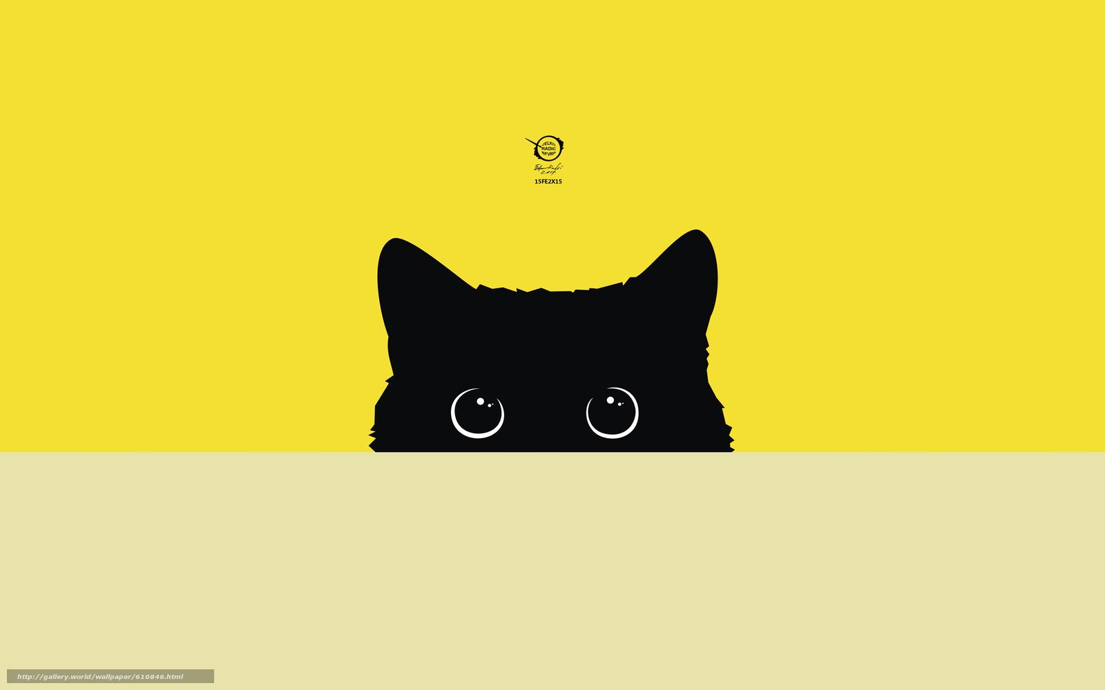 Download wallpaper cat,  kitty,  zelko,  radic free desktop wallpaper in the resolution 2560x1600 — picture №610846