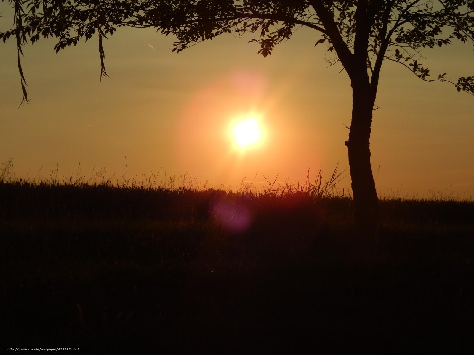 Tlcharger Fond d'ecran coucher du soleil,  Sun,  nature Fonds d'ecran gratuits pour votre rsolution du bureau 4608x3456 — image №613115