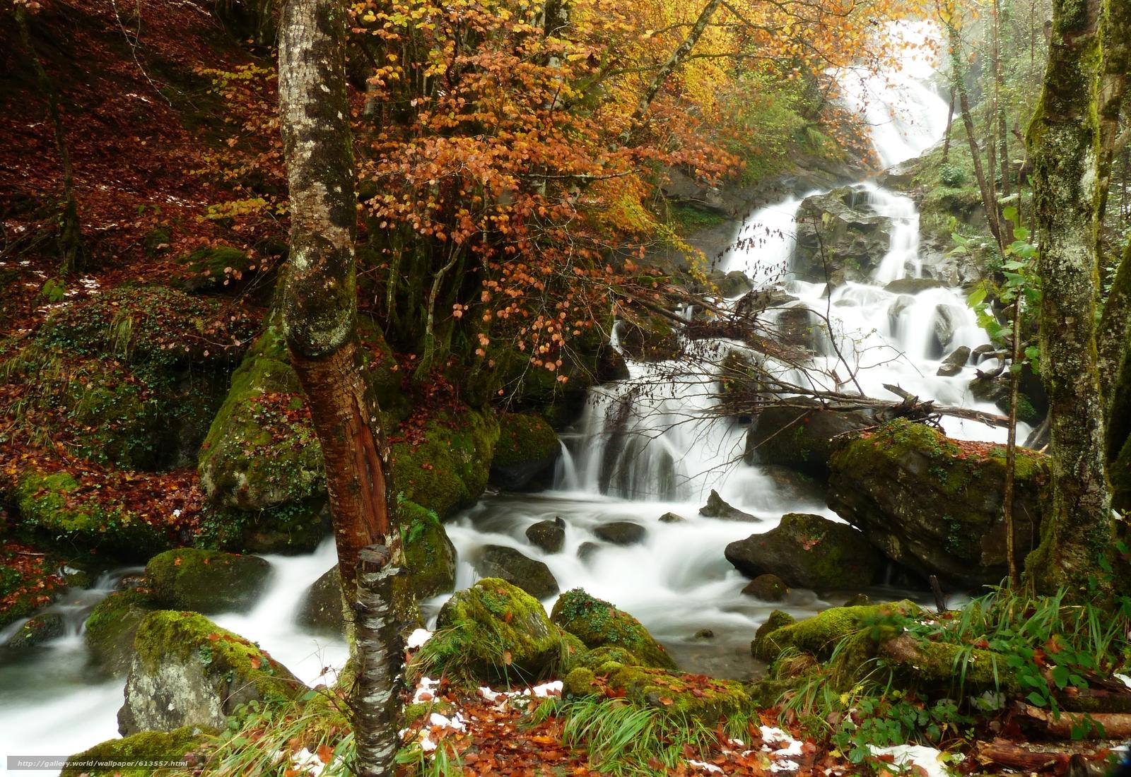 Descargar gratis bosque,  árboles,  otoño,  cascada Fondos de escritorio en la resolucin 4000x2750 — imagen №613557