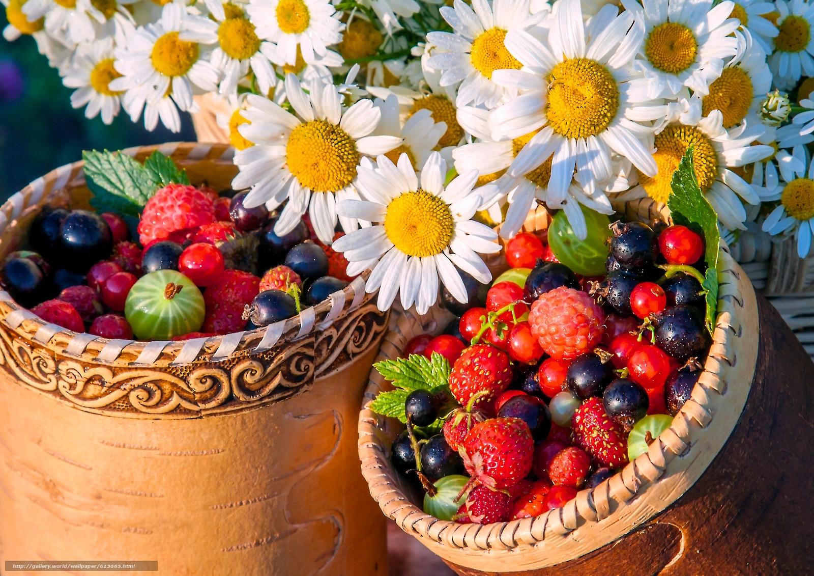 Скачать обои ягоды,  ромашки,  цветы,  туески бесплатно для рабочего стола в разрешении 2560x1810 — картинка №613665