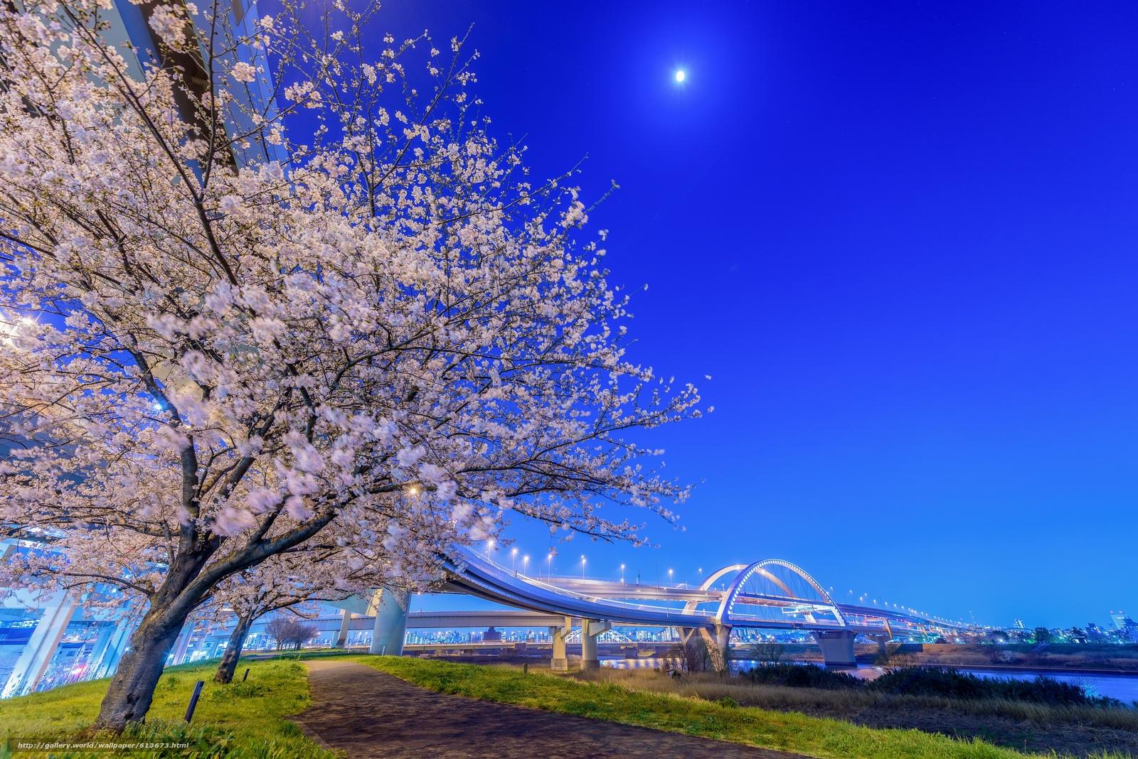 Скачать обои Adachi,  Tokyo,  Japan,  Arakawa River бесплатно для рабочего стола в разрешении 4000x2670 — картинка №613673