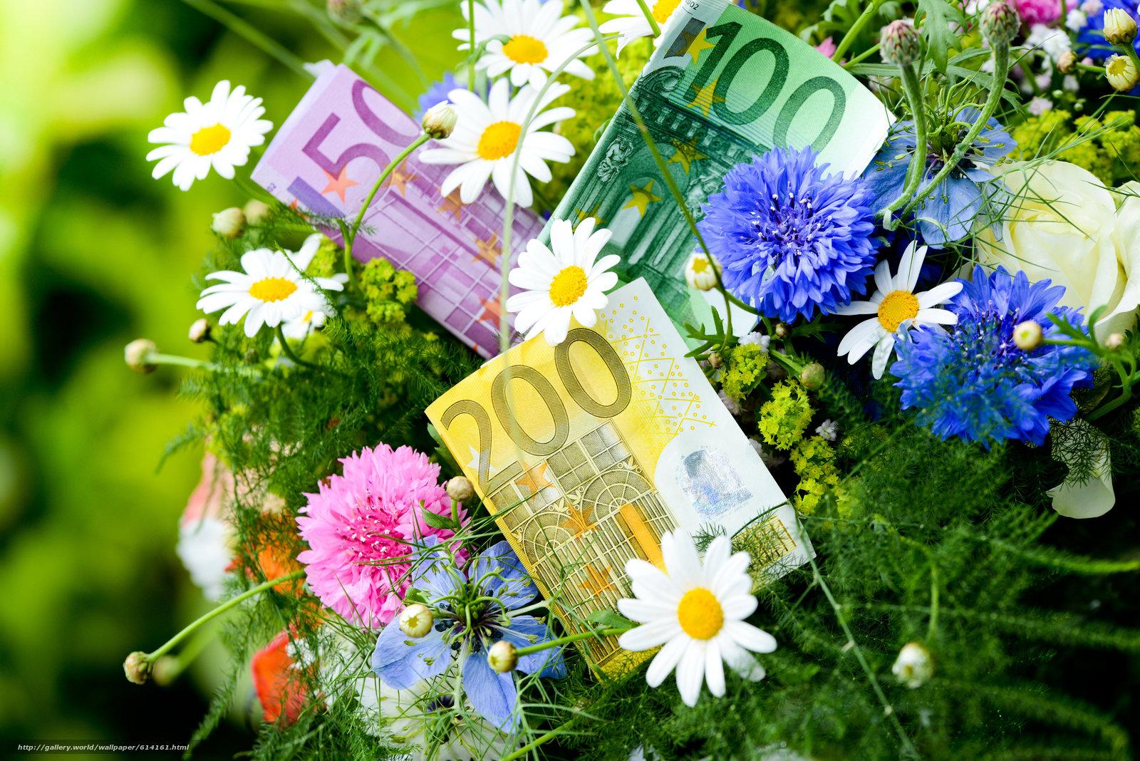 Descargar gratis dinero,  euros,  billetes,  proyecto de ley Fondos de escritorio en la resolucin 7360x4912 — imagen №614161