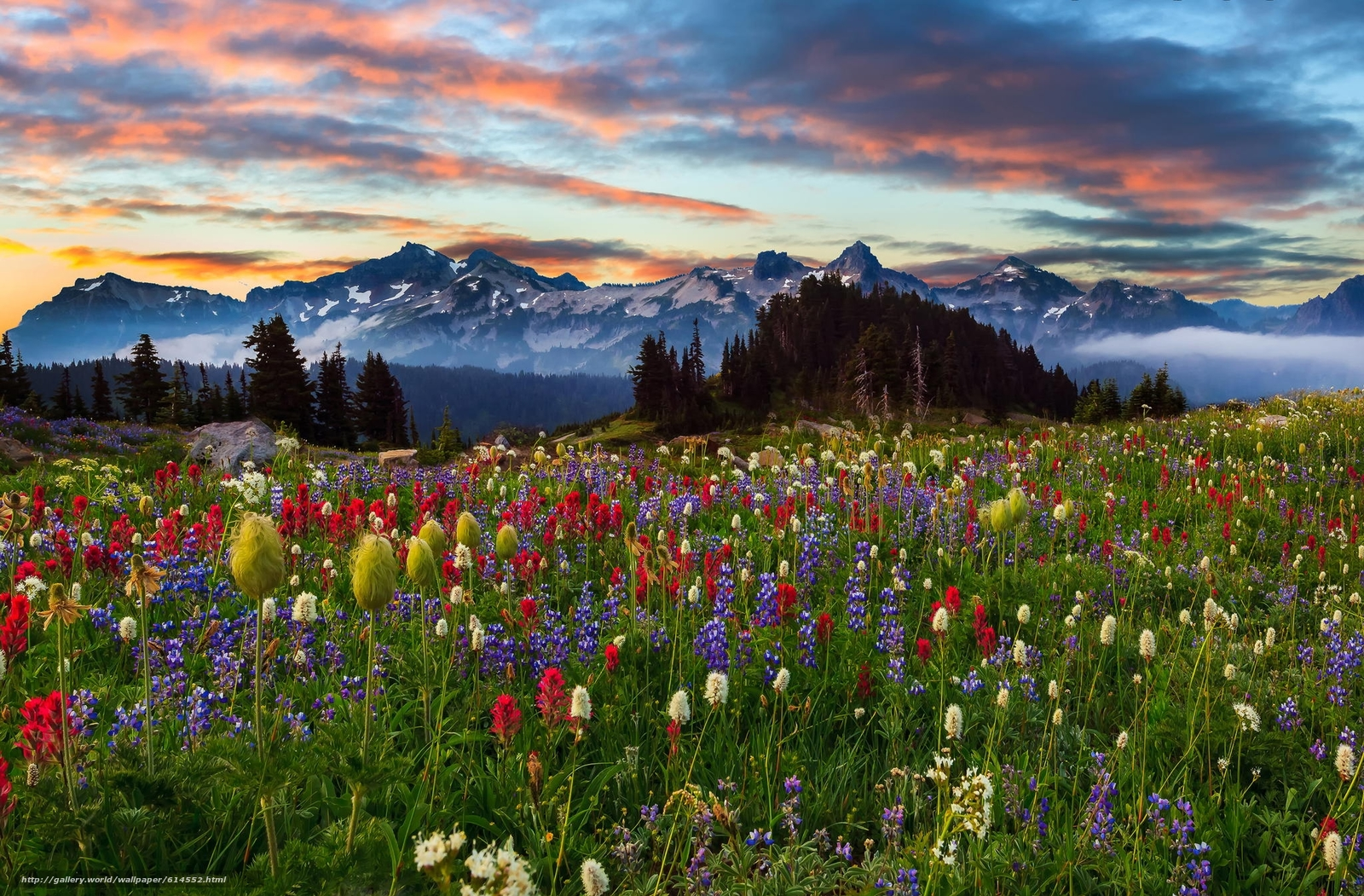 Download wallpaper Mountains,  sunset,  field,  Flowers free desktop wallpaper in the resolution 2048x1345 — picture №614552