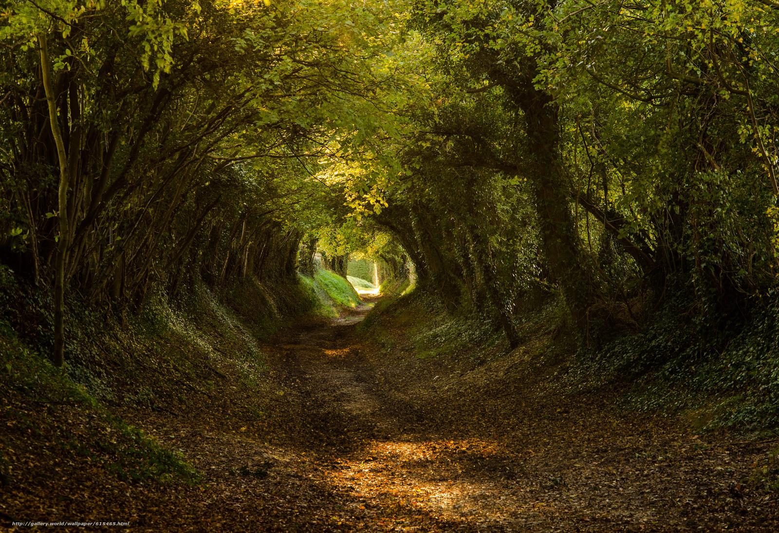 scaricare gli sfondi Halnaker,  West Sussex,  South Downs nazionale ParkEngland,  Regno Unito Sfondi gratis per la risoluzione del desktop 2048x1400 — immagine №615465