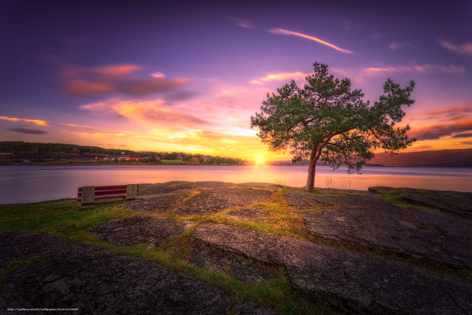 Download wallpaper tree,  sunset,  lake free desktop wallpaper in the resolution 2048x1367 — picture №616410