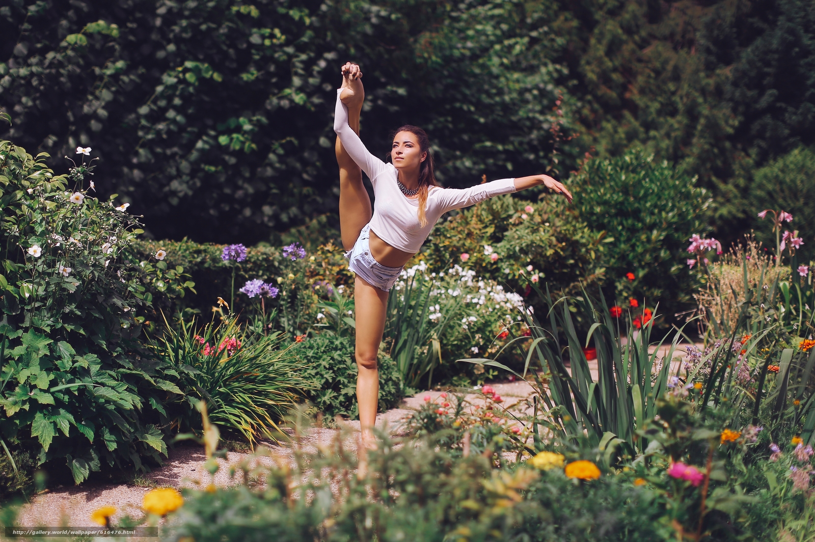 Скачать обои девушка,  балерина,  поза,  шорты бесплатно для рабочего стола в разрешении 5315x3538 — картинка №616476