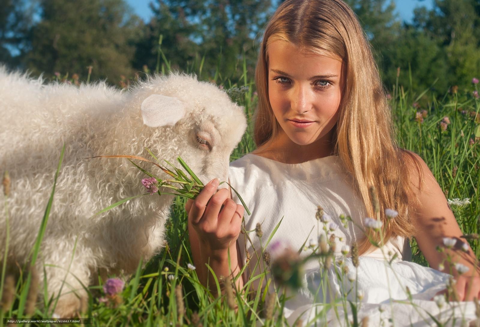 Download wallpaper girl,  view,  Lamb,  lamb free desktop wallpaper in the resolution 2896x1977 — picture №616617