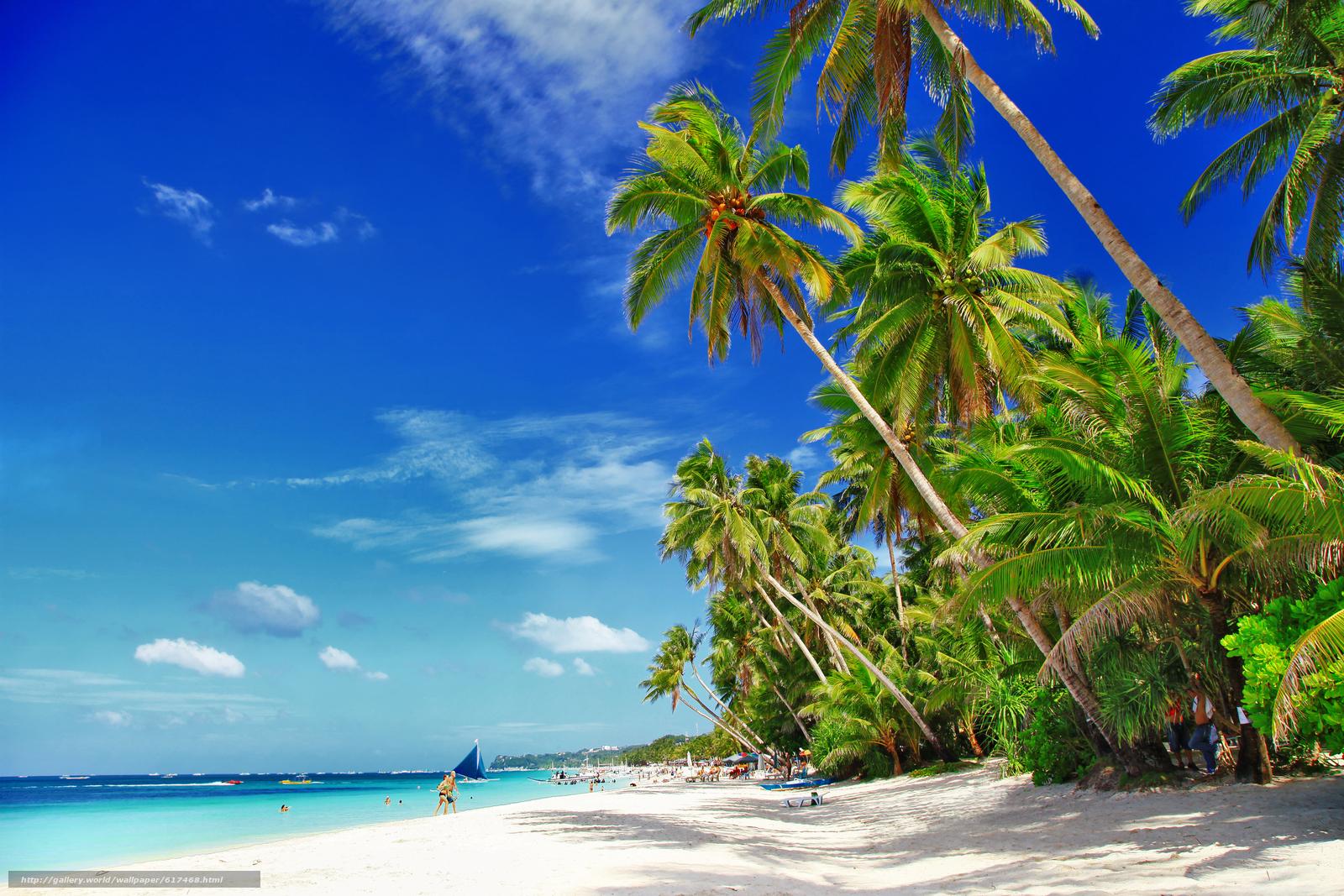 scaricare gli sfondi palme,  Costa,  spiaggia,  barche Sfondi gratis per la risoluzione del desktop 5616x3744 — immagine №617468