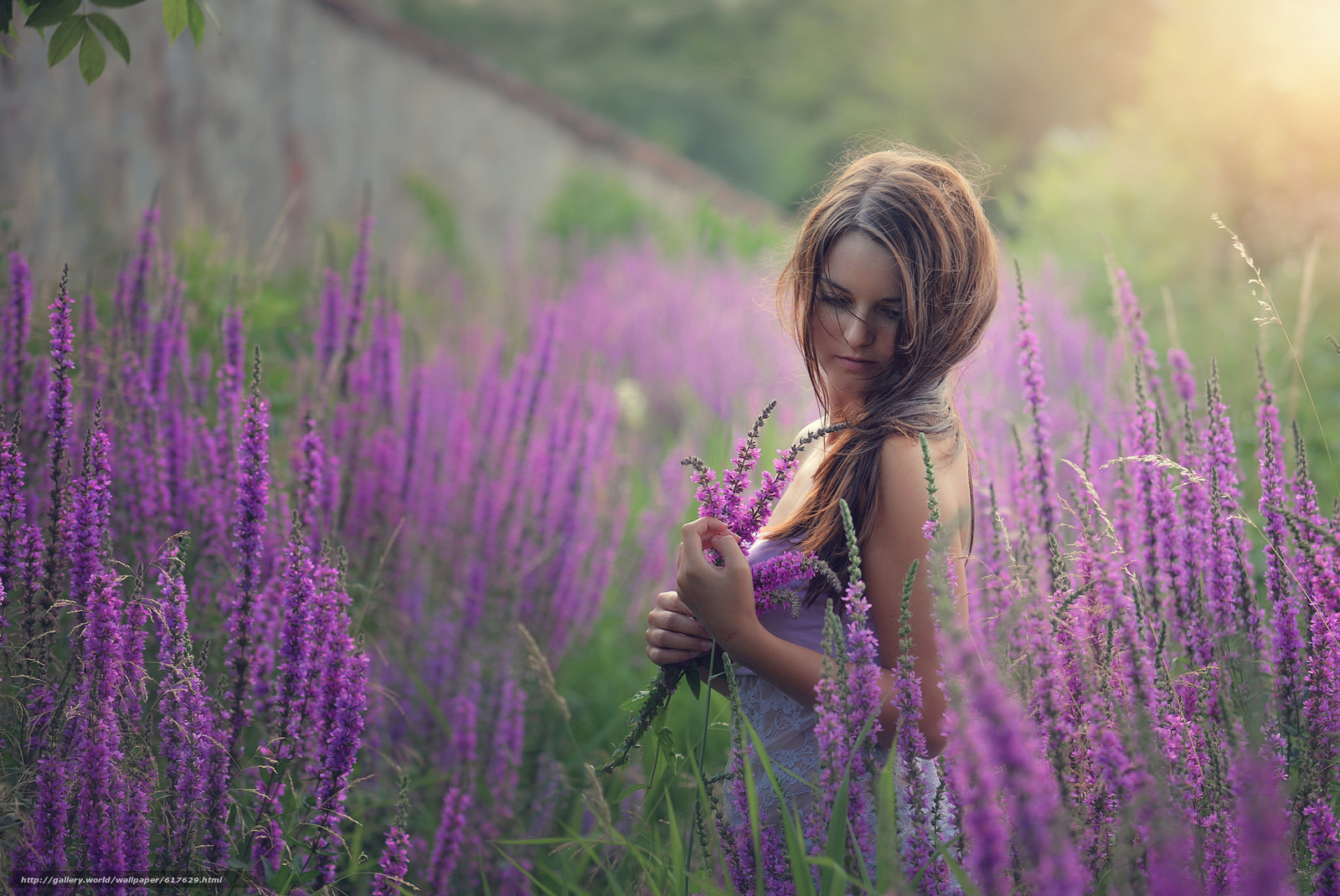 Download wallpaper girl,  Flowers,  meadow,  mood free desktop wallpaper in the resolution 2048x1369 — picture №617629