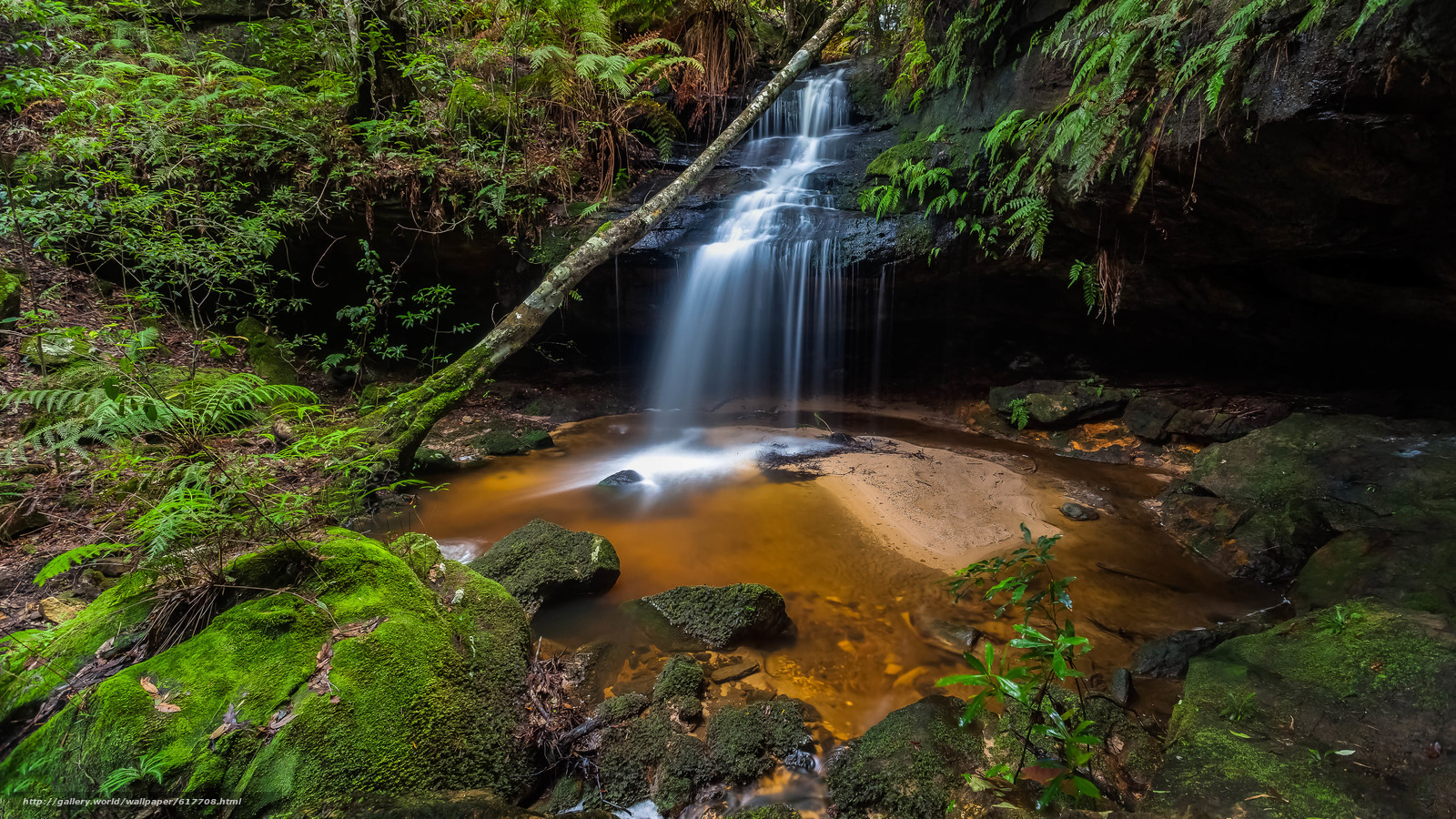Descargar gratis cascada,  bosque,  árboles,  Rocas Fondos de escritorio en la resolucin 5616x3159 — imagen №617708