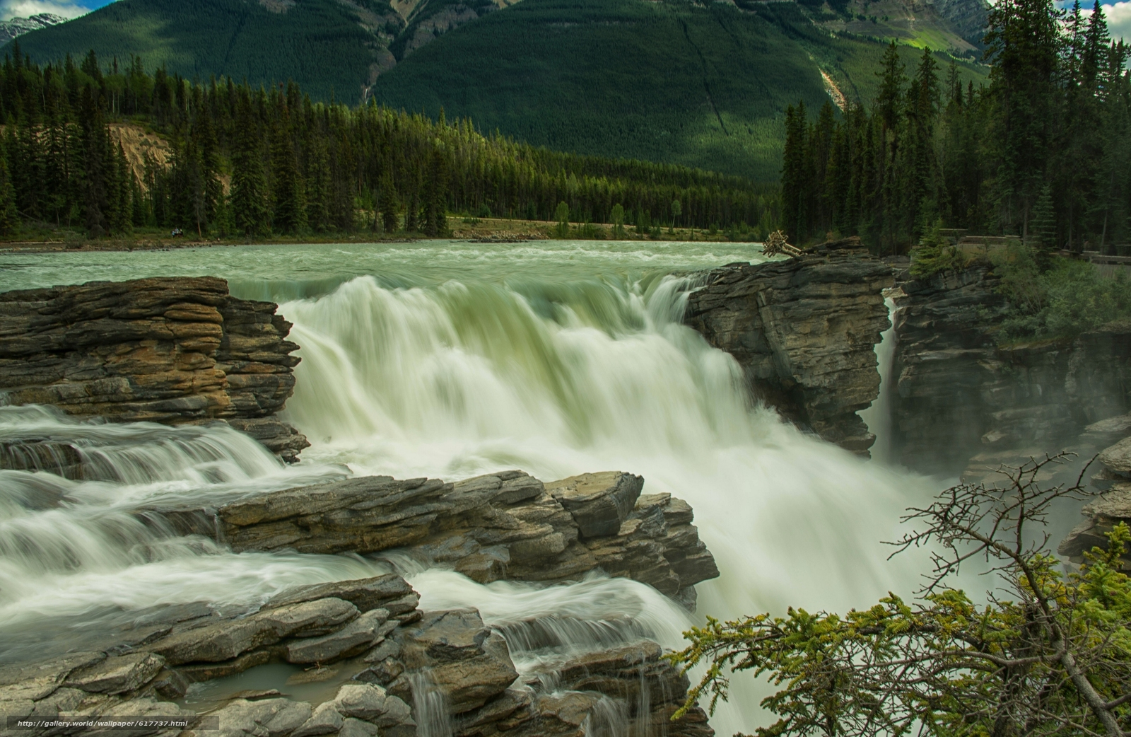 Picture of athabasca falls in jasper national park in alberta canada - Download Wallpaper Athabasca Falls Athabasca River