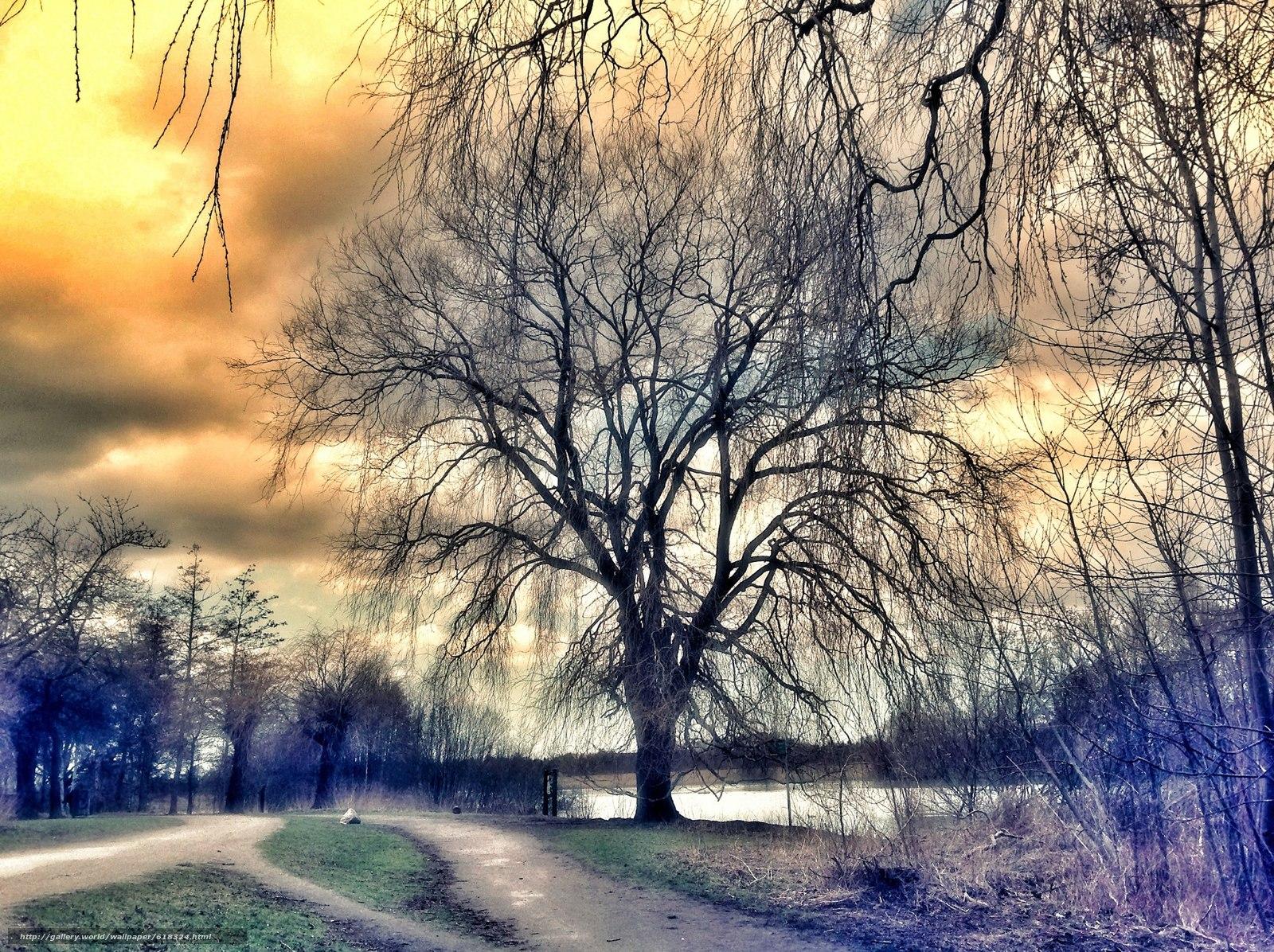 Скачать обои закат,  озеро,  дорога,  деревья бесплатно для рабочего стола в разрешении 2048x1531 — картинка №618324
