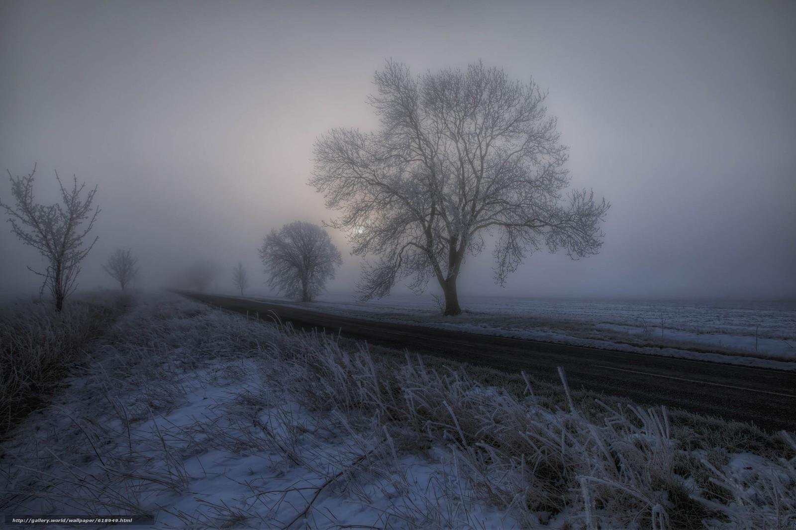 Скачать обои закат,  дорога,  деревья,  туман бесплатно для рабочего стола в разрешении 2500x1664 — картинка №618949