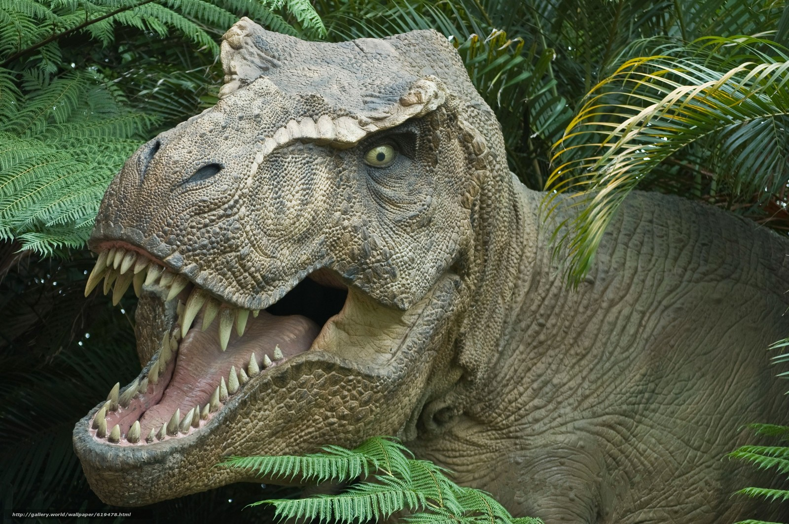 下载壁纸 霸王龙, 恐龙, 侏罗纪公园 免费为您的桌面分辨率的壁纸