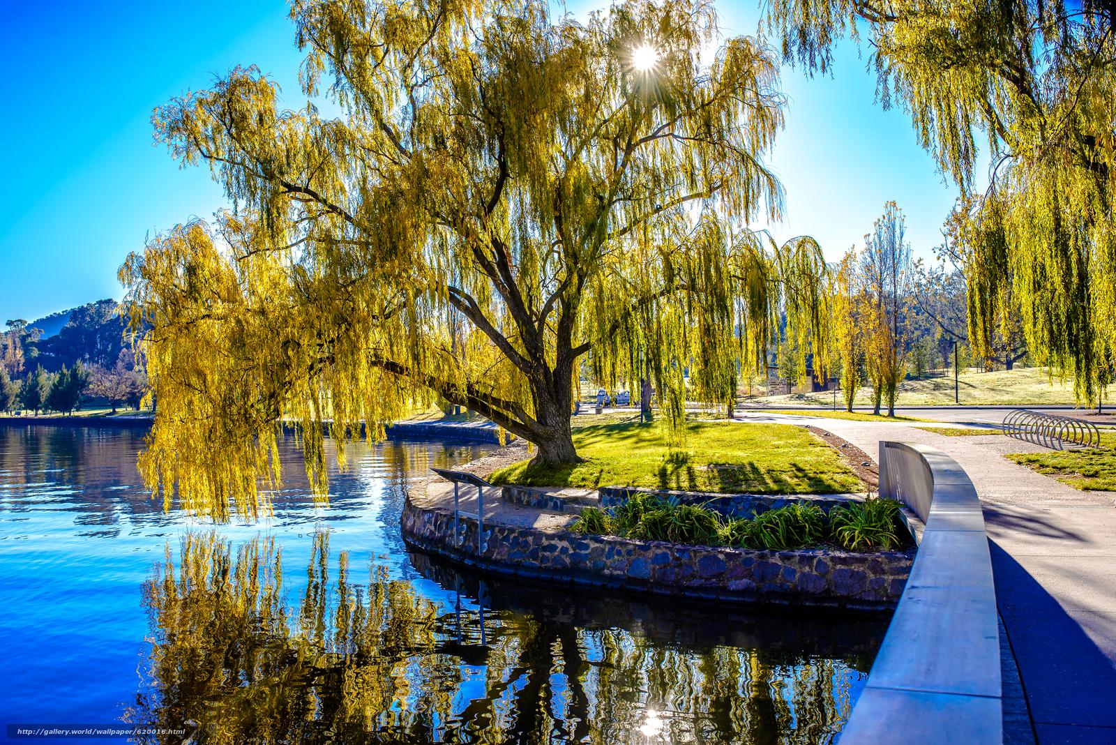 Скачать обои Lake Burley,  Australia,  озеро,  парк бесплатно для рабочего стола в разрешении 4000x2670 — картинка №620016