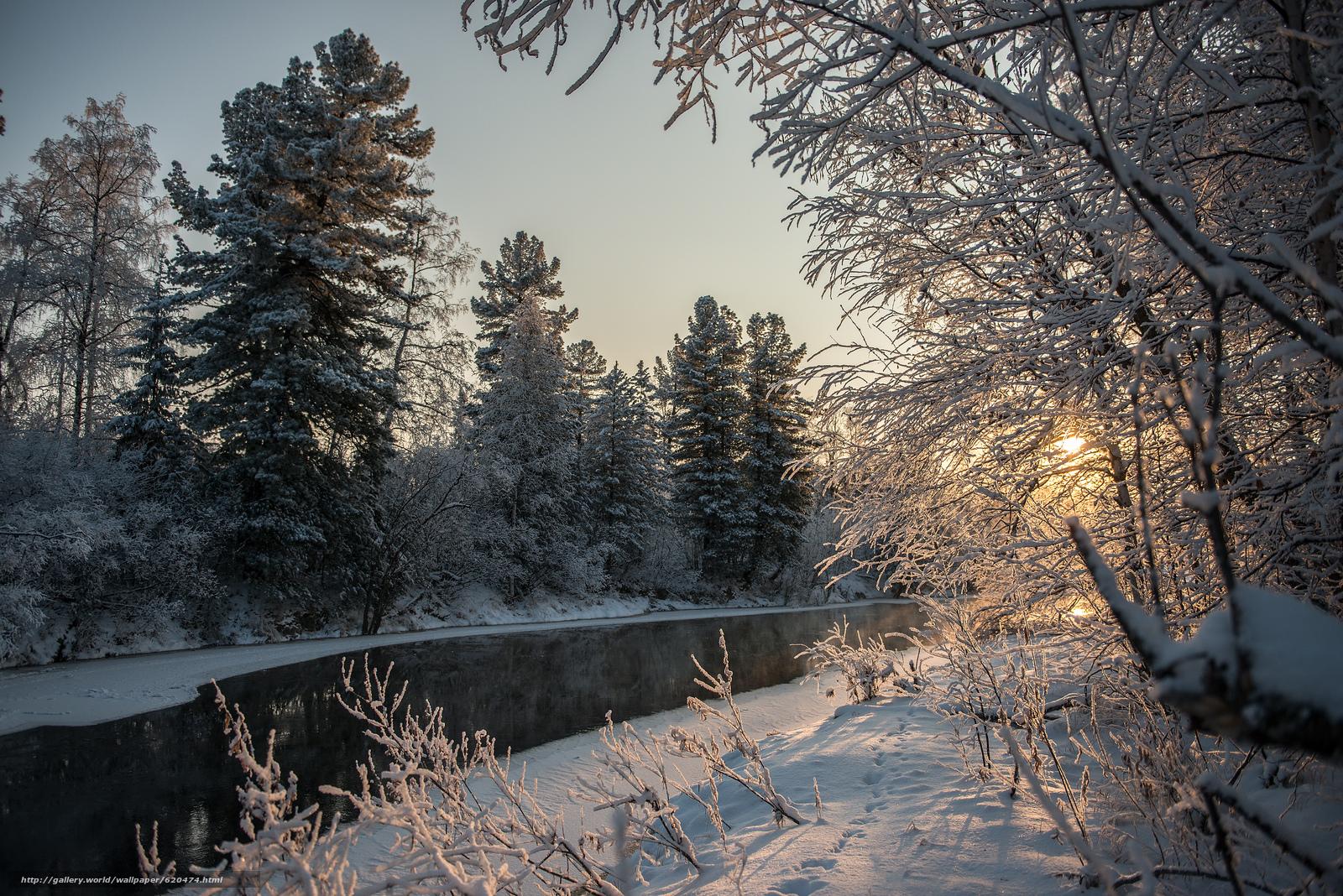 Скачать обои река,  зима,  лес,  деревья бесплатно для рабочего стола в разрешении 4000x2670 — картинка №620474