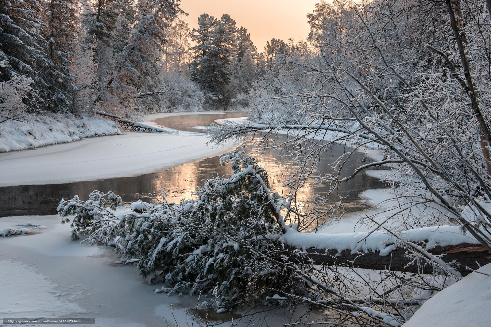 Скачать обои река,  зима,  лес,  деревья бесплатно для рабочего стола в разрешении 4000x2670 — картинка №620475