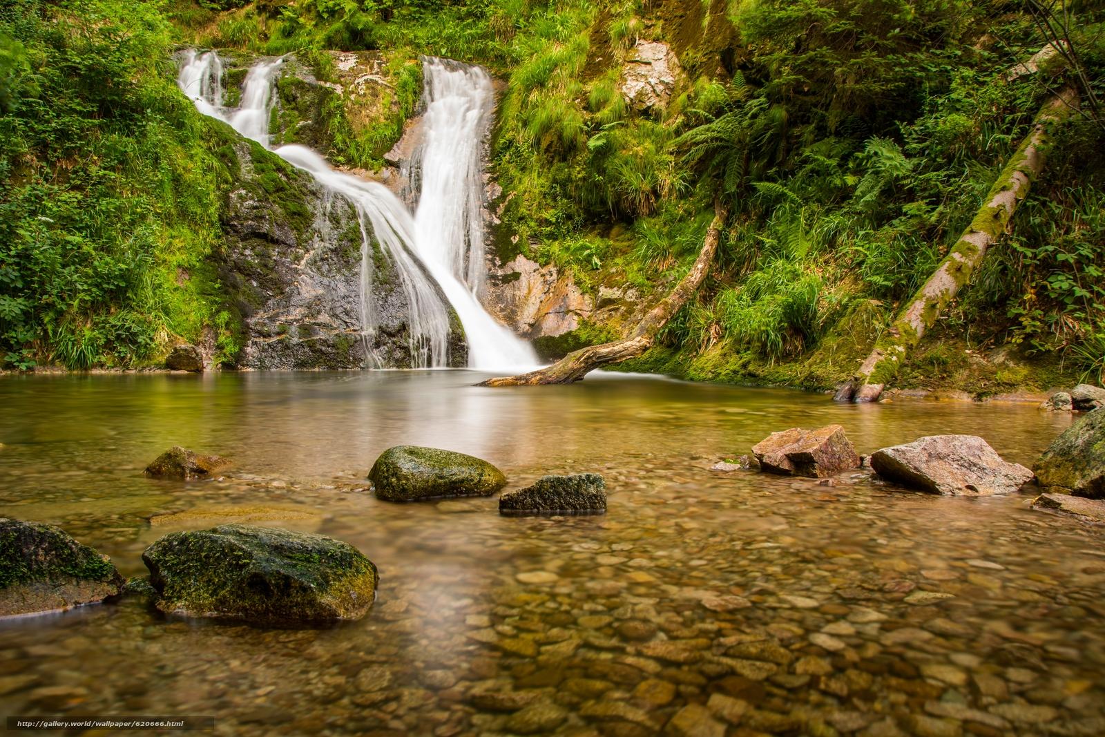 scaricare gli sfondi Cascate di Allerheiligen,  Foresta Nera,  Fiume Lierbach,  Baden-Württemberg Sfondi gratis per la risoluzione del desktop 5455x3637 — immagine №620666