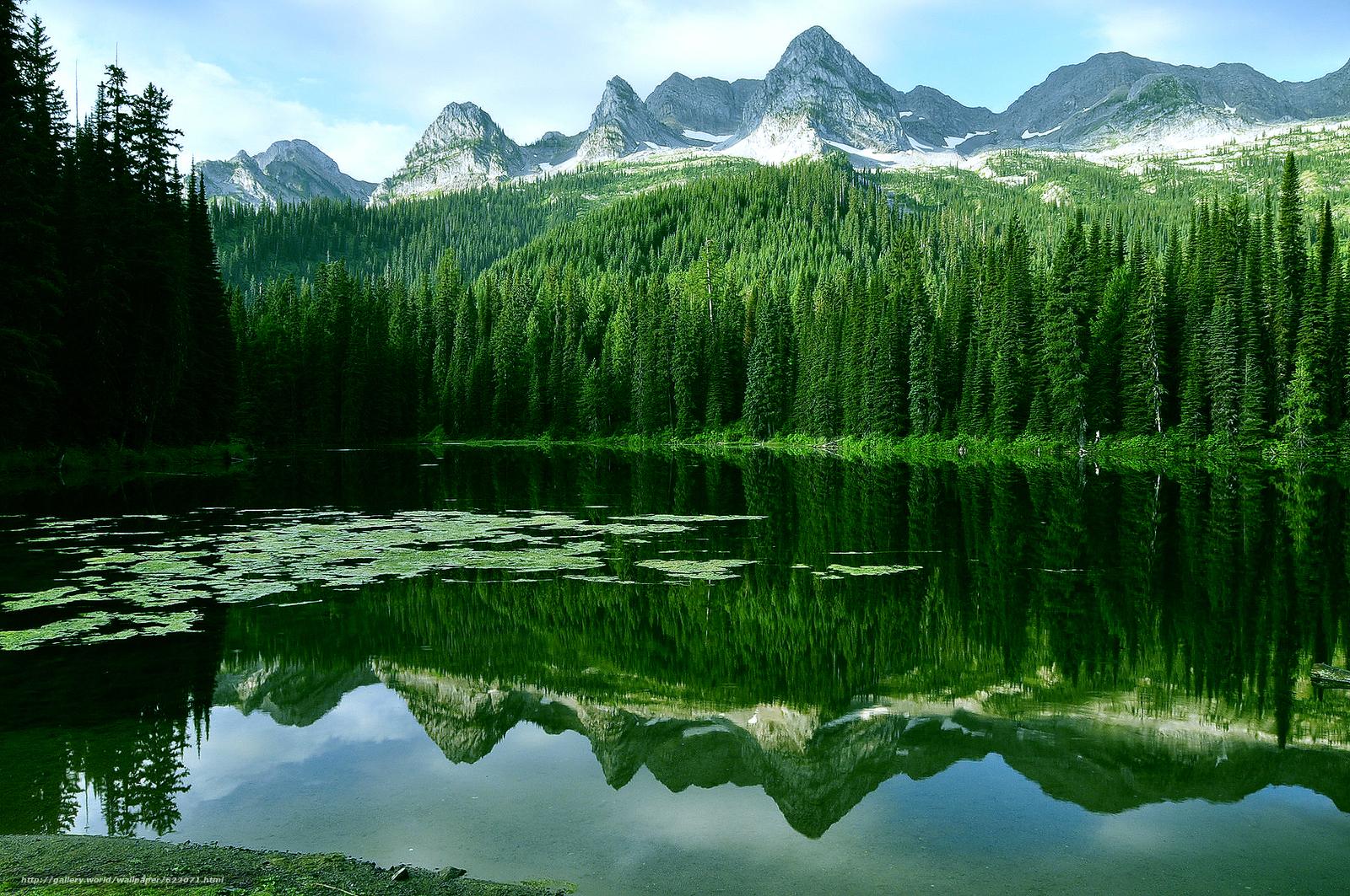 下载壁纸 湖,  山,  树,  景观 免费为您的桌面分辨率的壁纸 2144x1424 — 图片 №622071