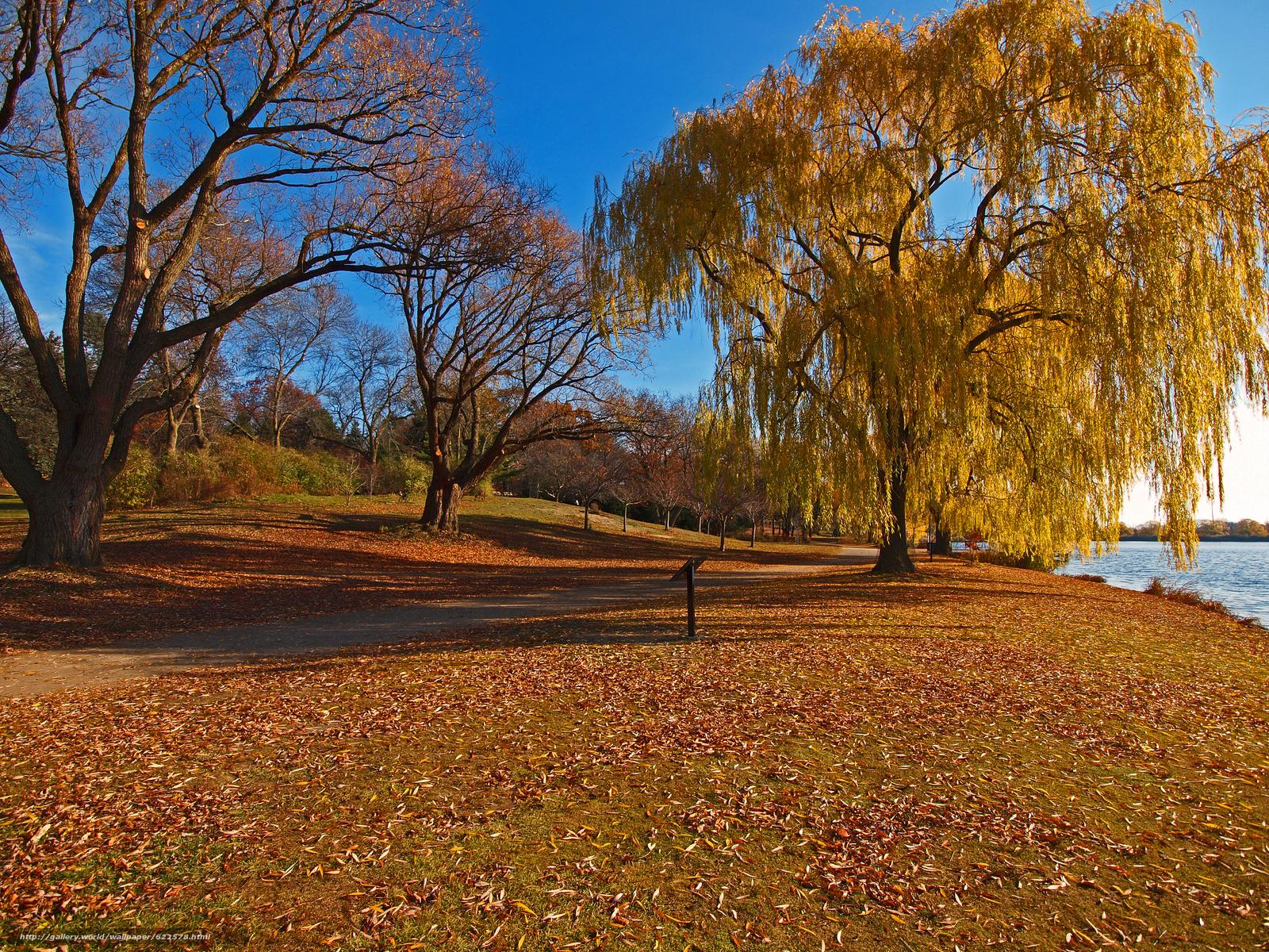 Tlcharger Fond d'ecran parc,  lac,  automne,  arbres Fonds d'ecran gratuits pour votre rsolution du bureau 4032x3024 — image №622578